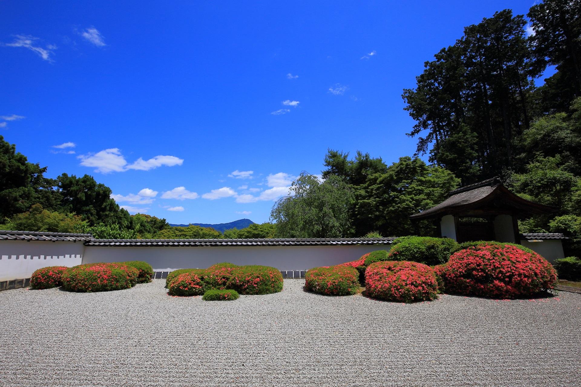 正伝寺 さつき 比叡山借景の鮮やかな枯山水庭園