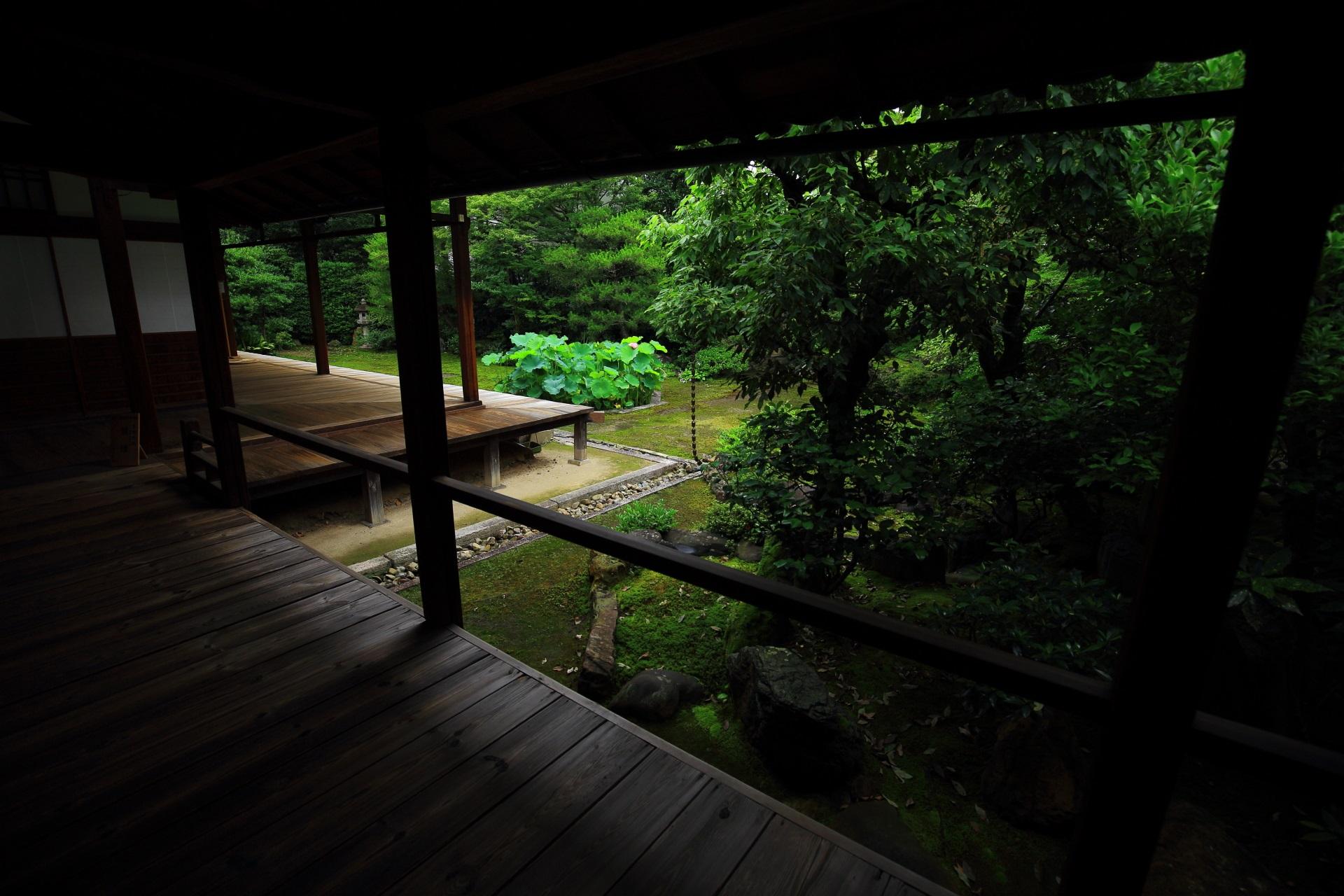 風情ある回廊でつながる本法寺の巴の庭と蓮池