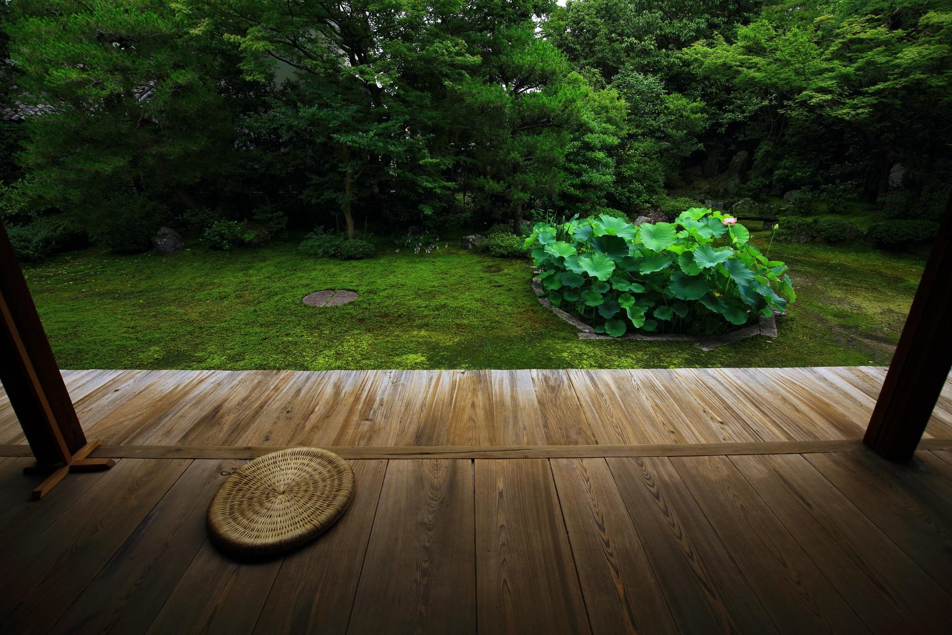 巴の文字の築山が三つあるため「三巴の庭」と呼ばれる本法寺の庭園
