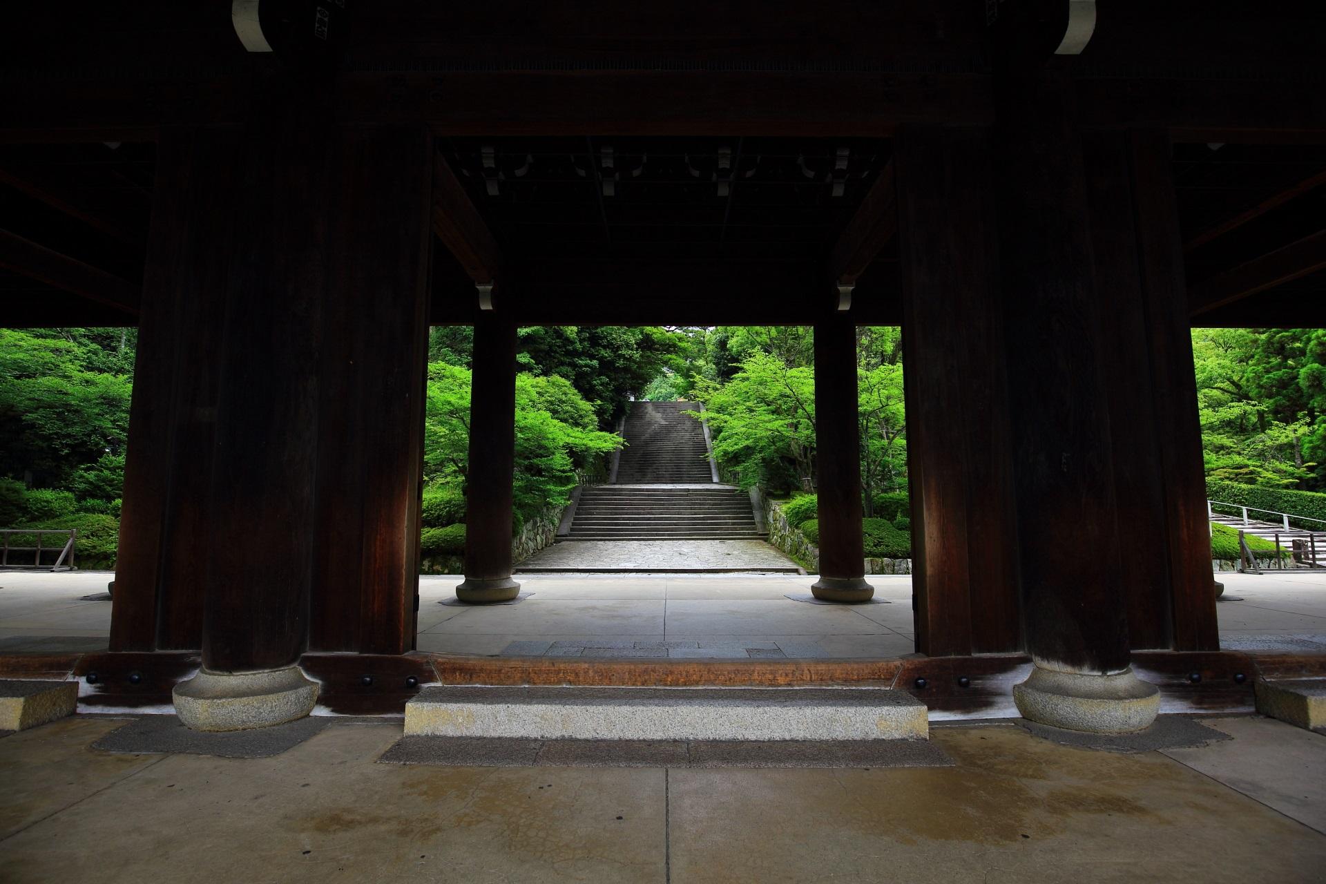 三門から見える美しい絶品の緑