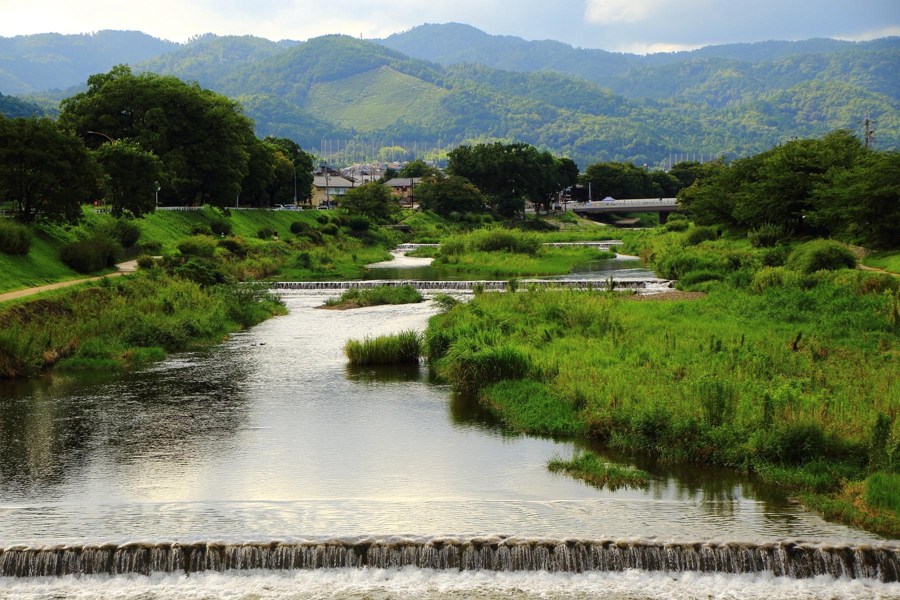 緑と川の美しい風景