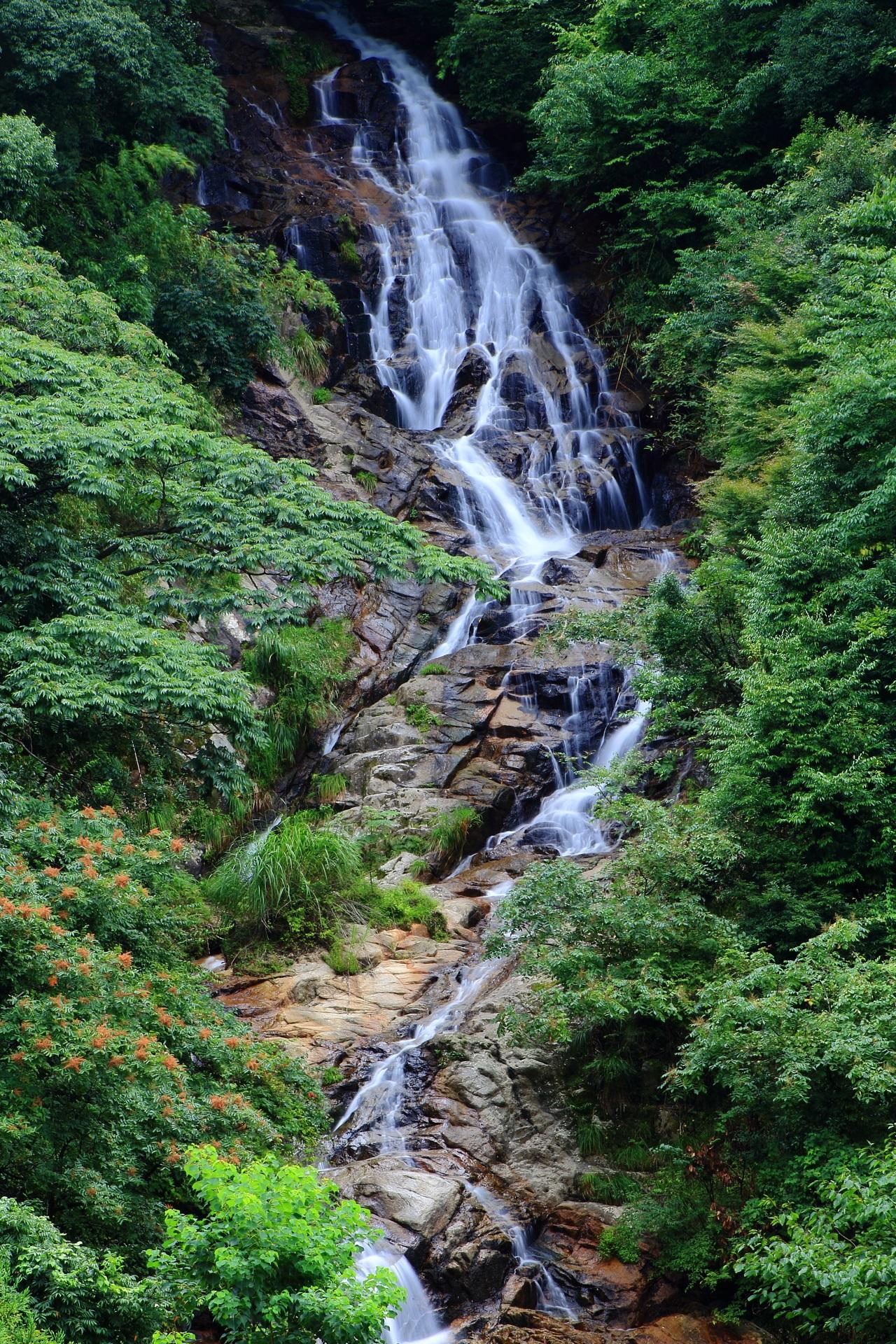 山の中の岩の上を流れる今福の滝