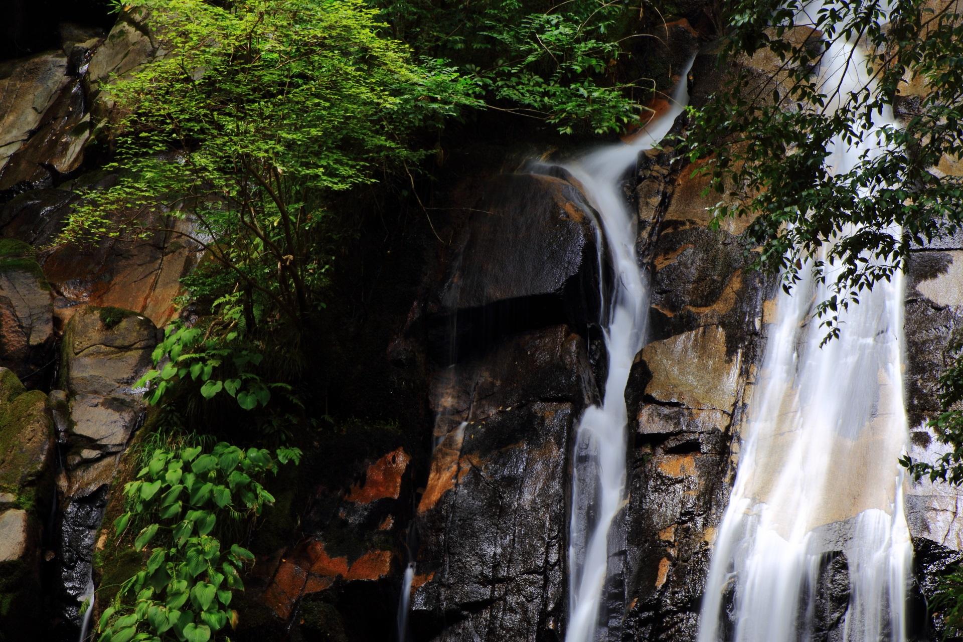 京都で唯一の日本の滝100選
