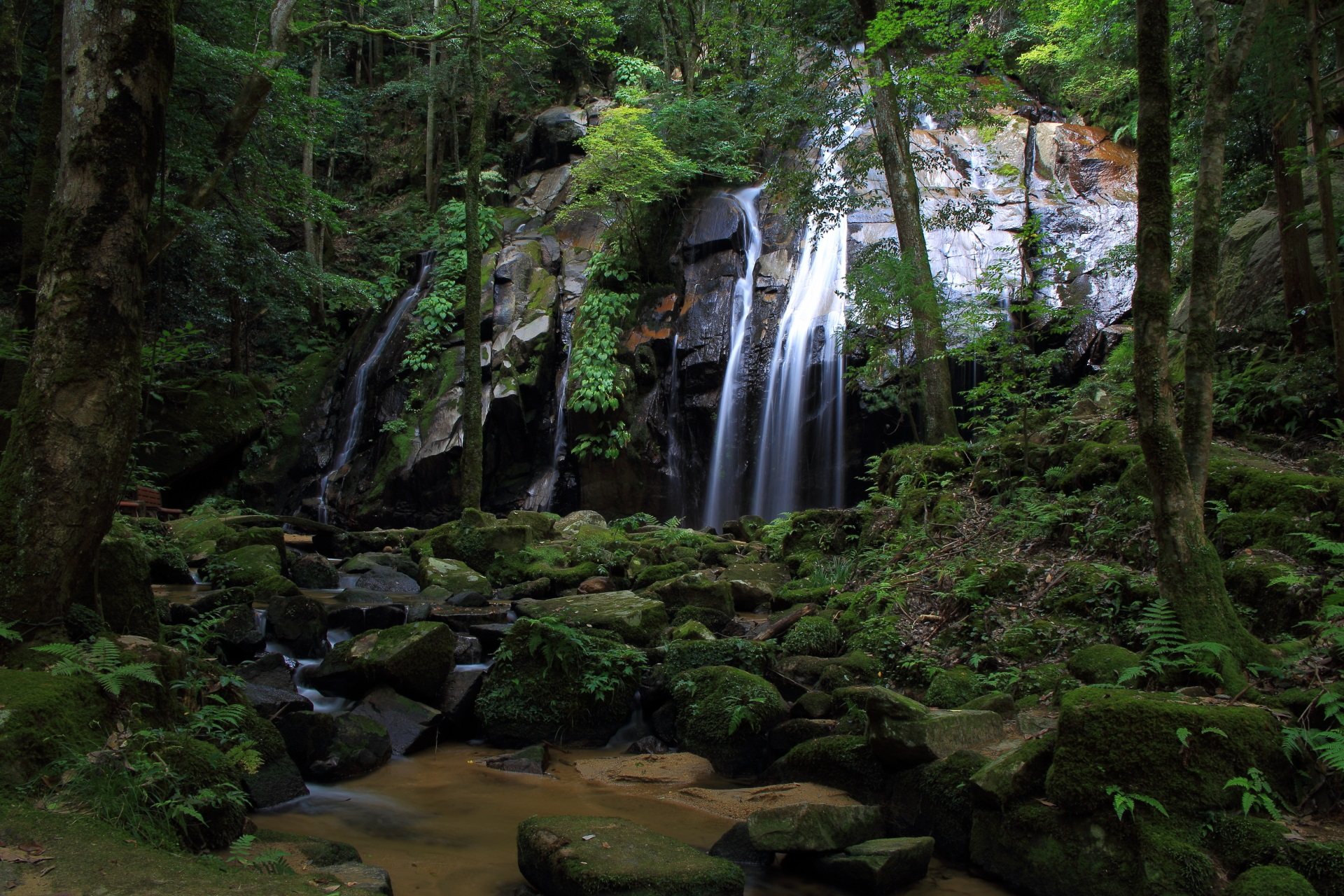 大きな岩と苔につつまれた金引の滝