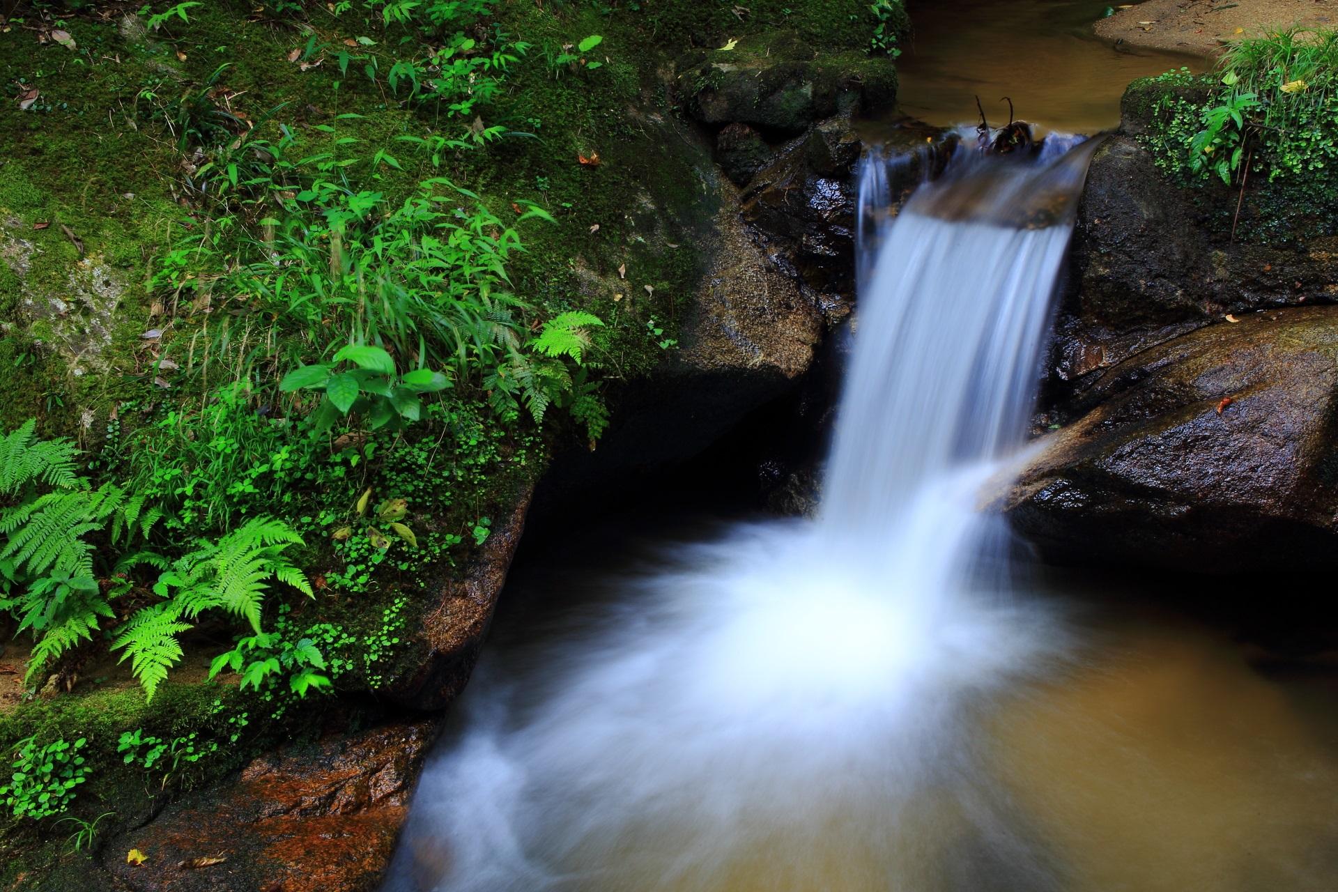 美しい滝の流れと緑