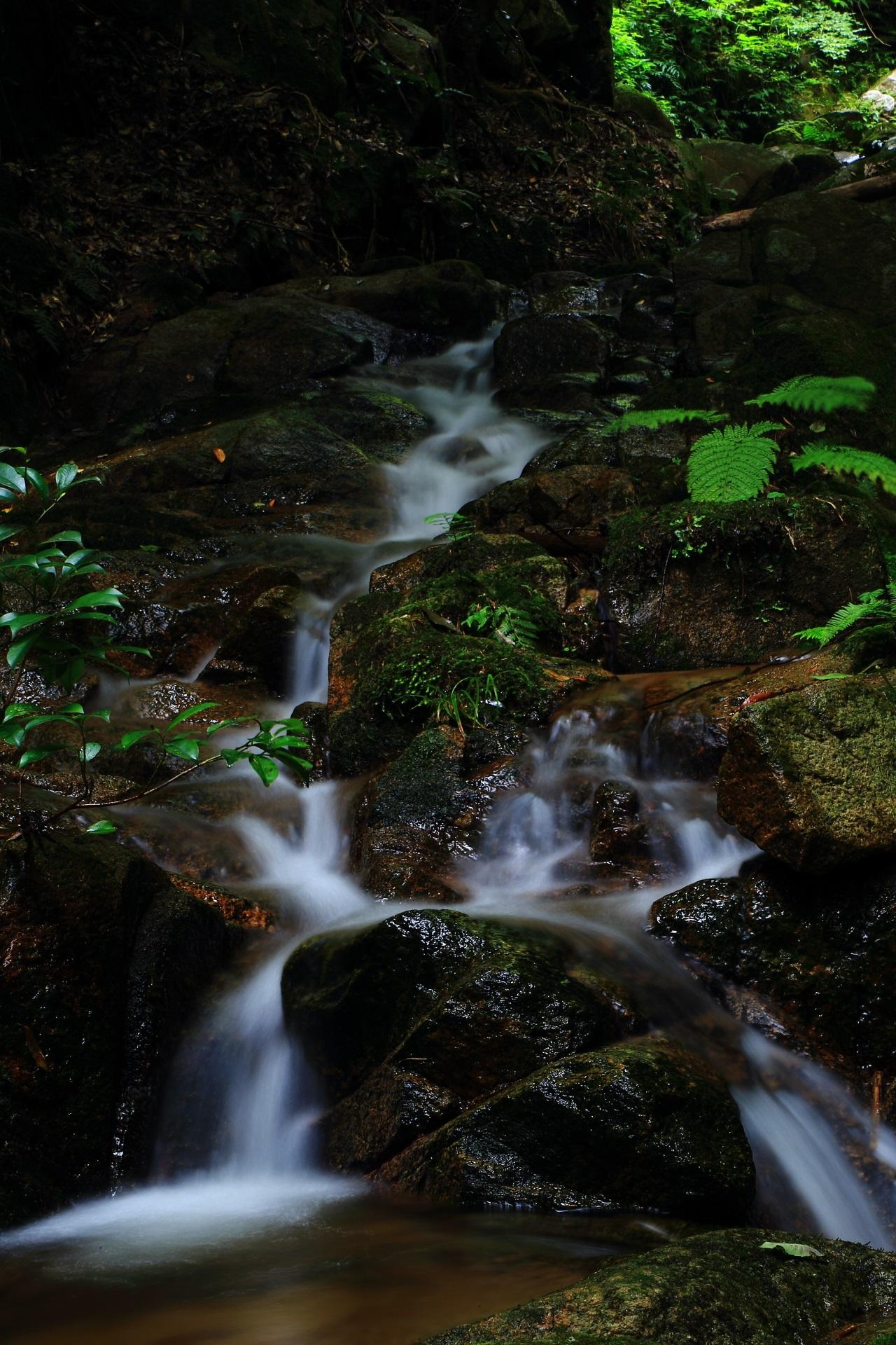 今福の滝の七の滝