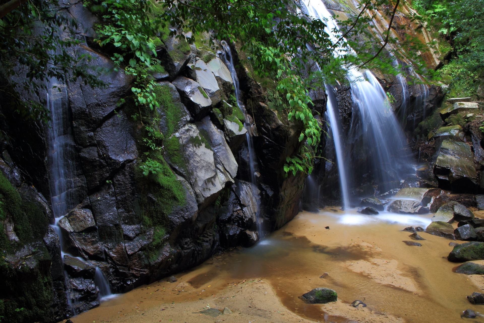 緑も豊富な金引の滝