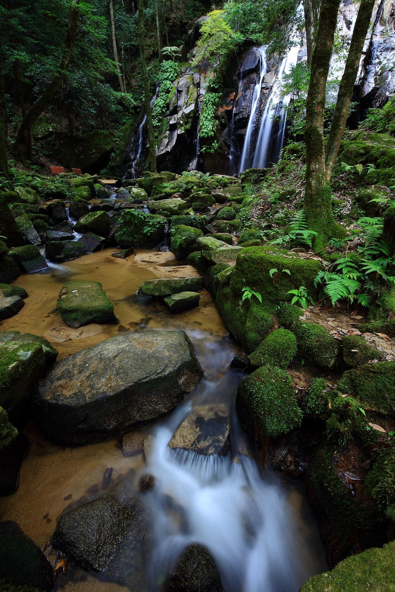 金引の滝と美しい水の流れ