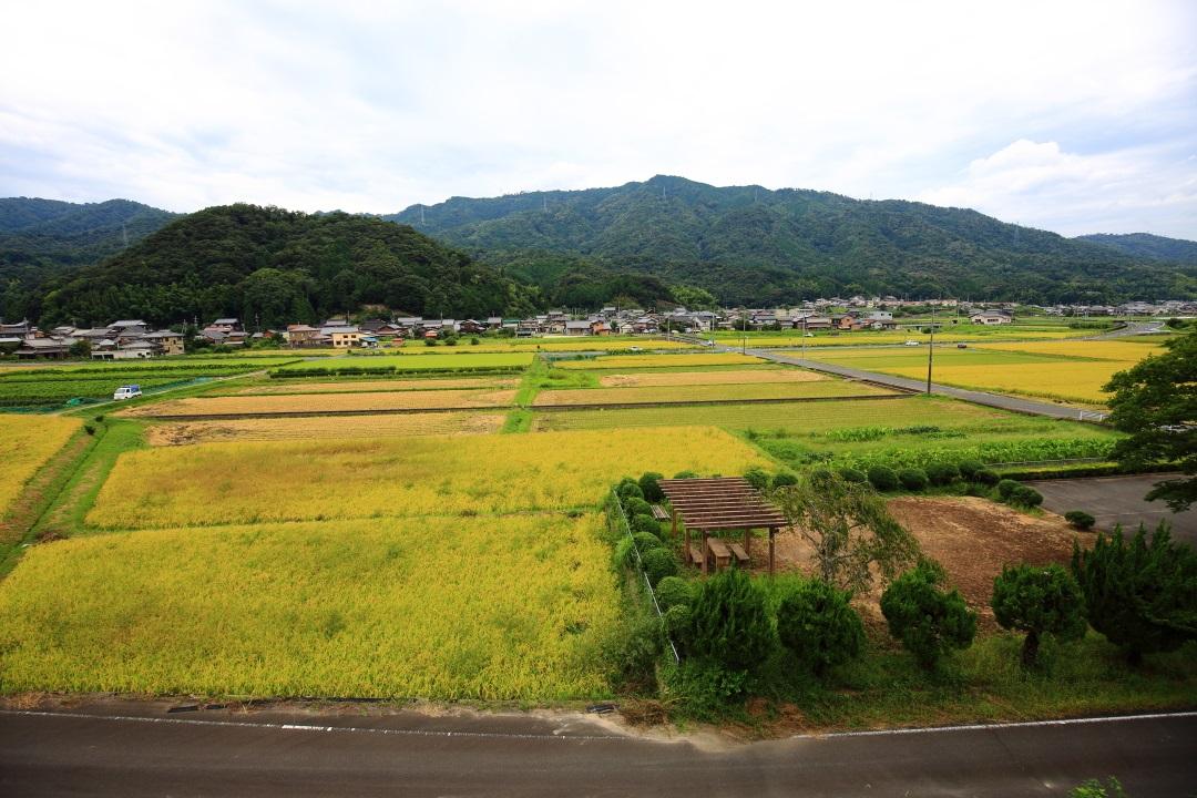 喜多駅から眺めたのどかな田園風景
