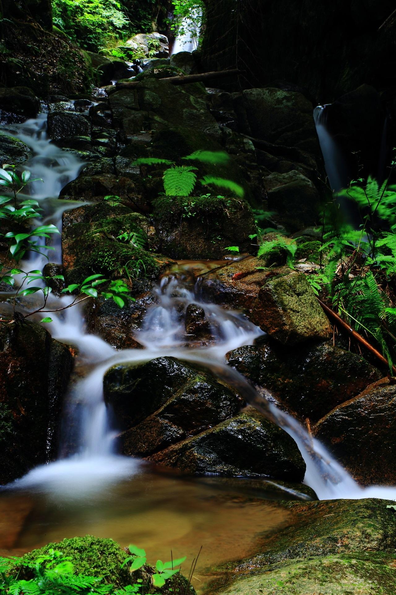 コントラスト強めの水の流れが光る滝