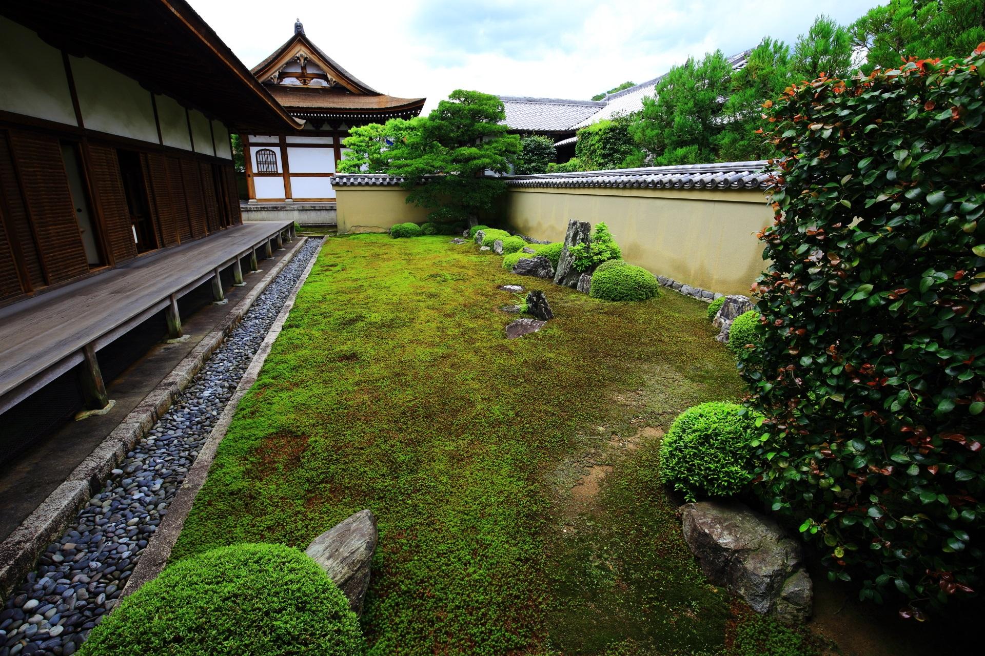 相阿弥作の庭園と伝えられる龍源院の方丈裏の龍吟庭
