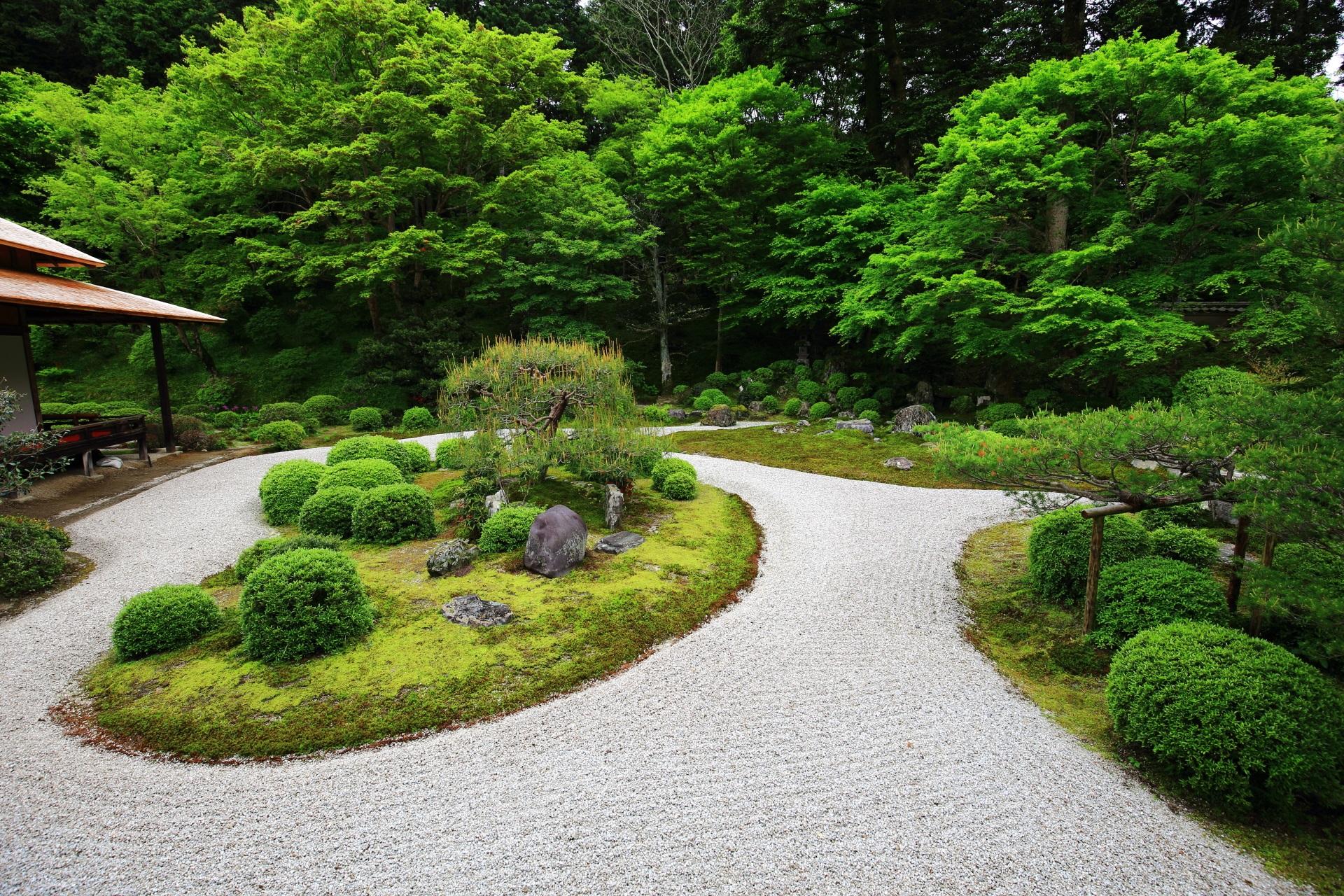 曼殊院の大書院東側の白砂と緑の絶品の庭園