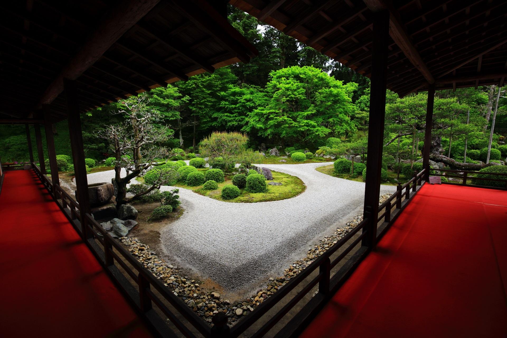 綺麗な赤い絨毯と庭園の彩りとのコントラスト