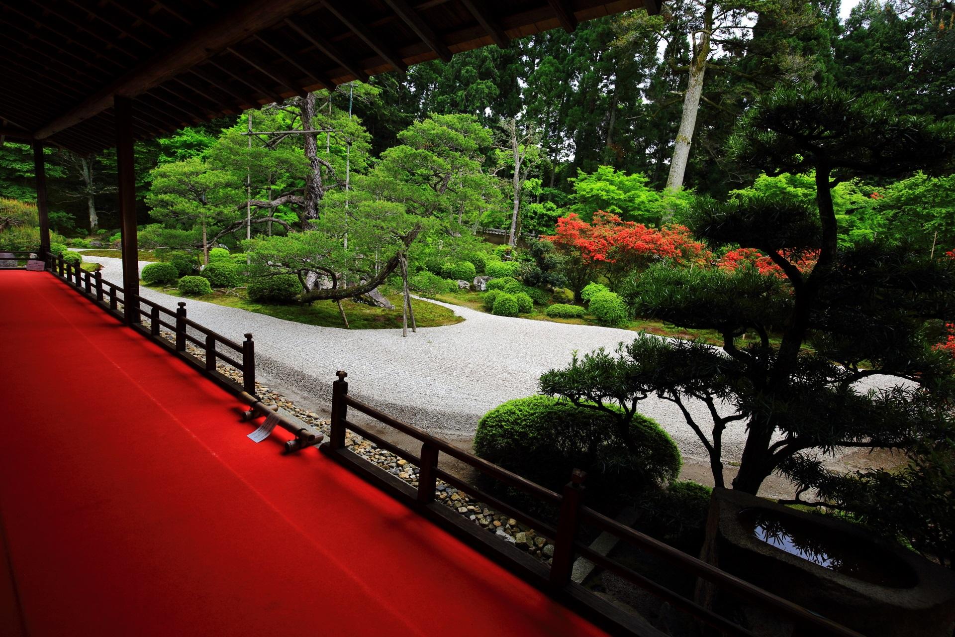 白砂に映える赤いツツジと赤い絨毯
