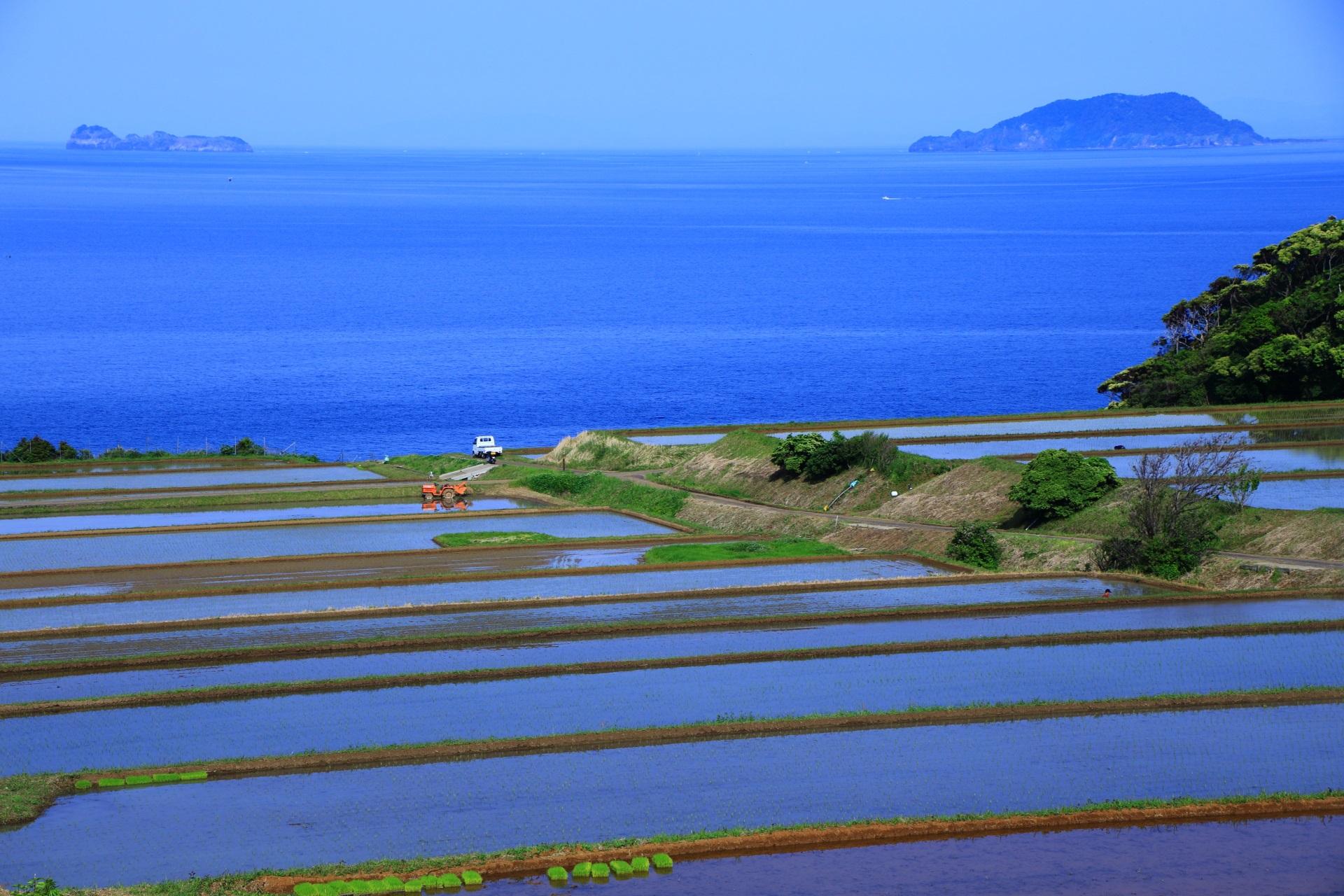 棚田の向こうに見える舞鶴市の沓島(くつじま)と冠島(かんむりじま)