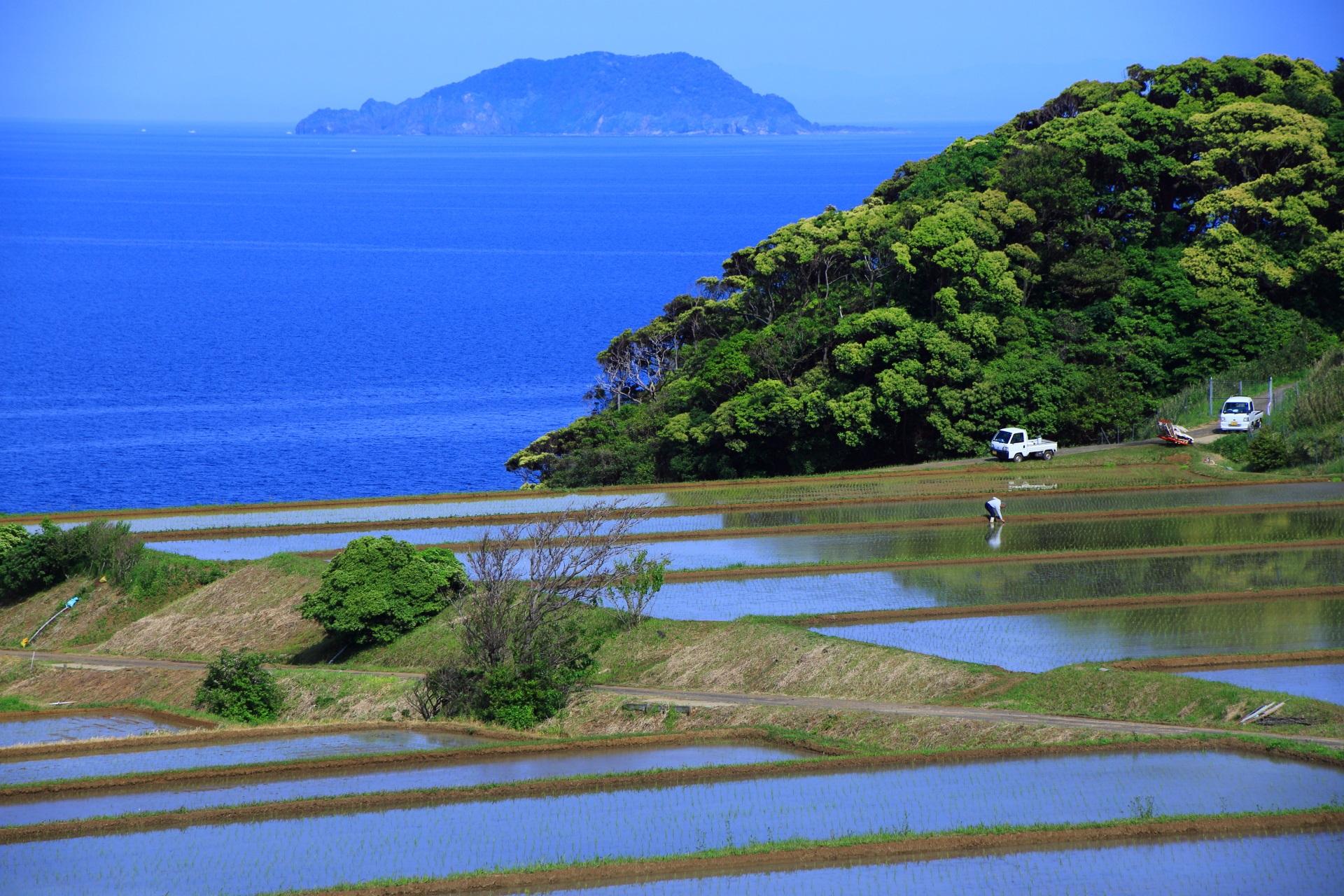 緑と海につつまれる自然あふれる新井の棚田