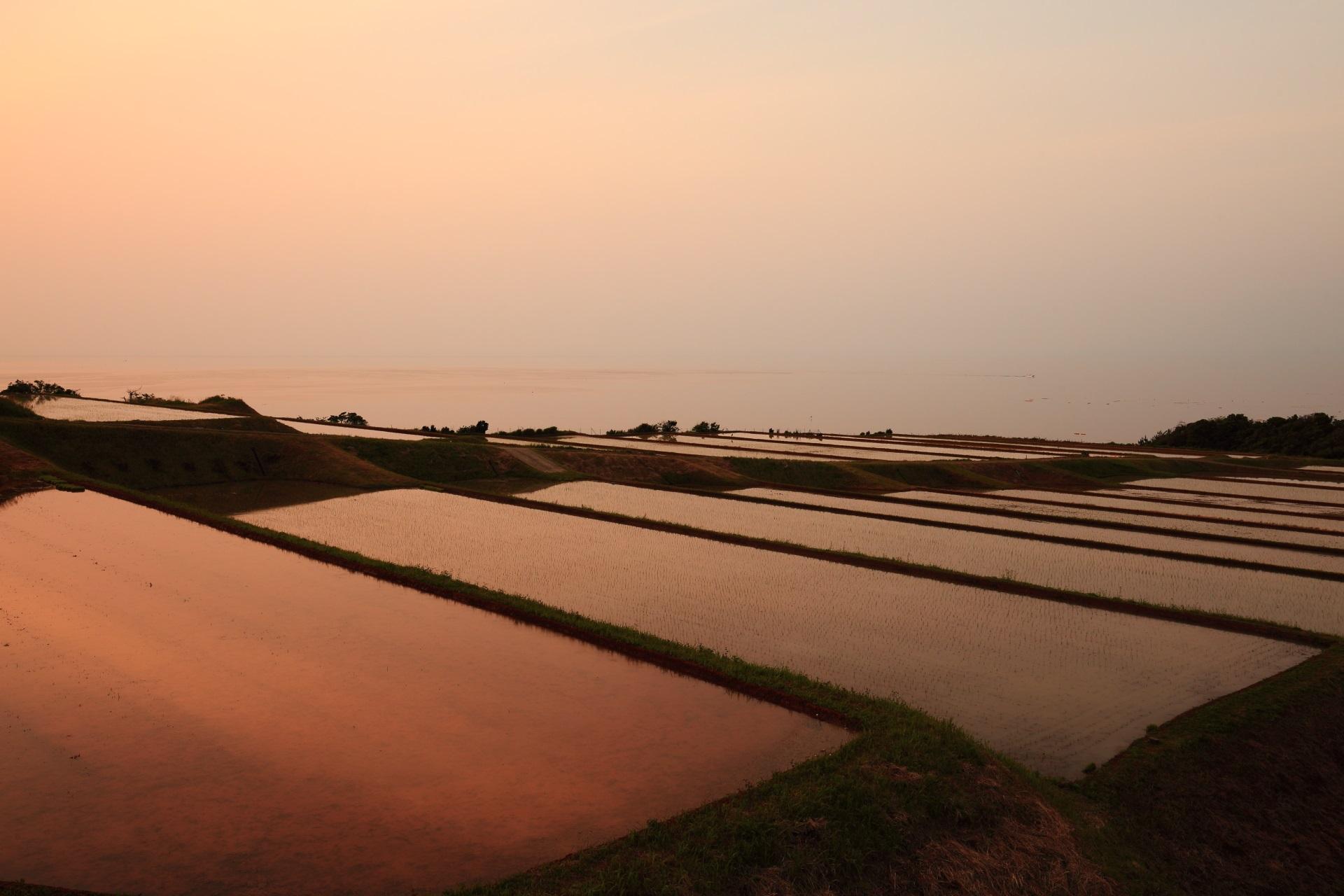夕焼けにほのかに染まる空と海と棚田