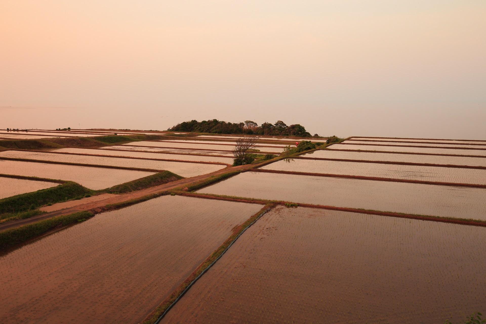 夕陽を後ろから浴びて薄っすらと彩られる新井の棚田と日本海