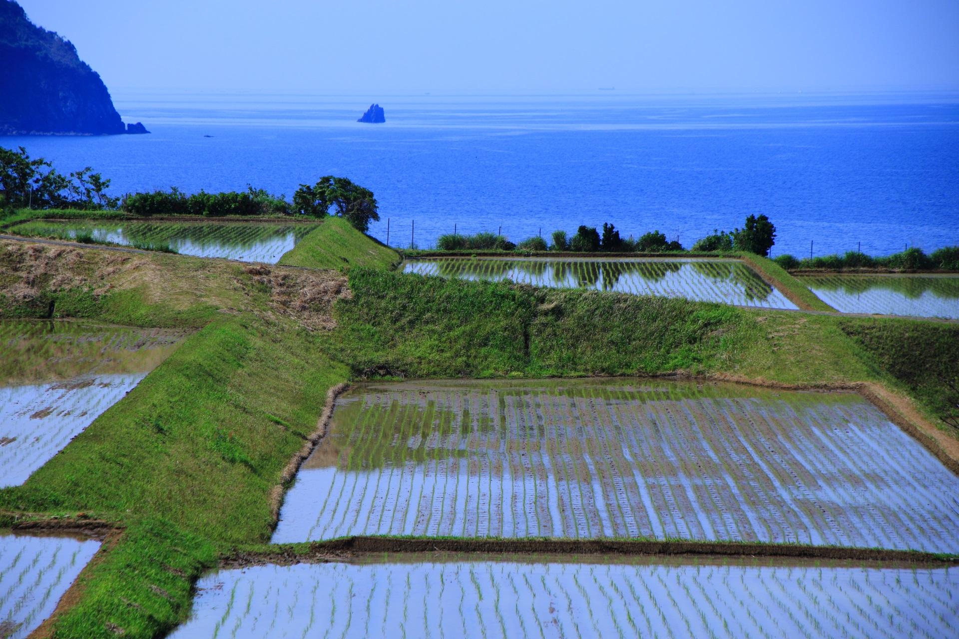 断崖絶壁と海を臨む長閑な棚田