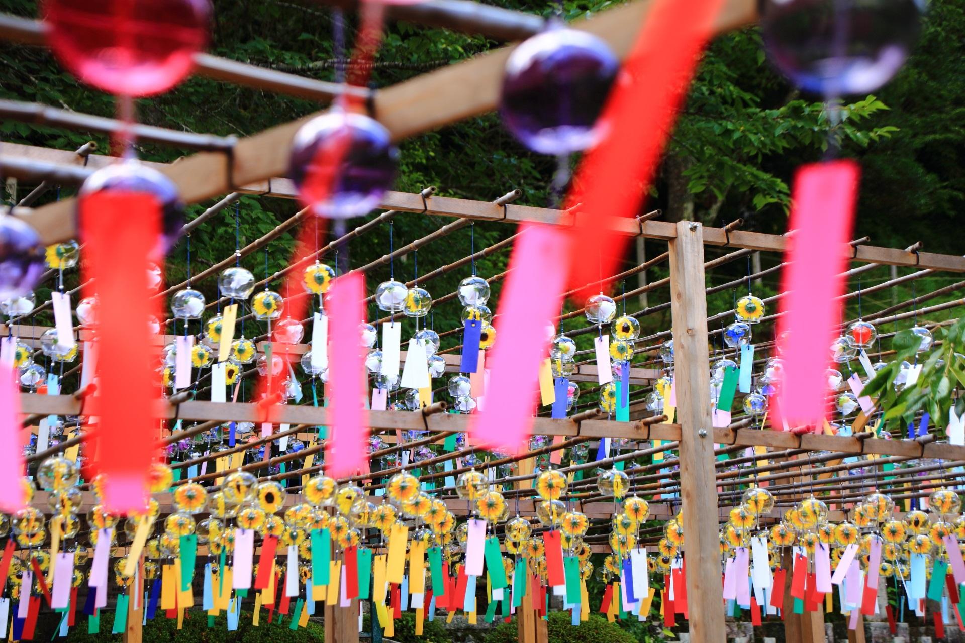 正寿院の境内を華やぐ色とりどりの短冊
