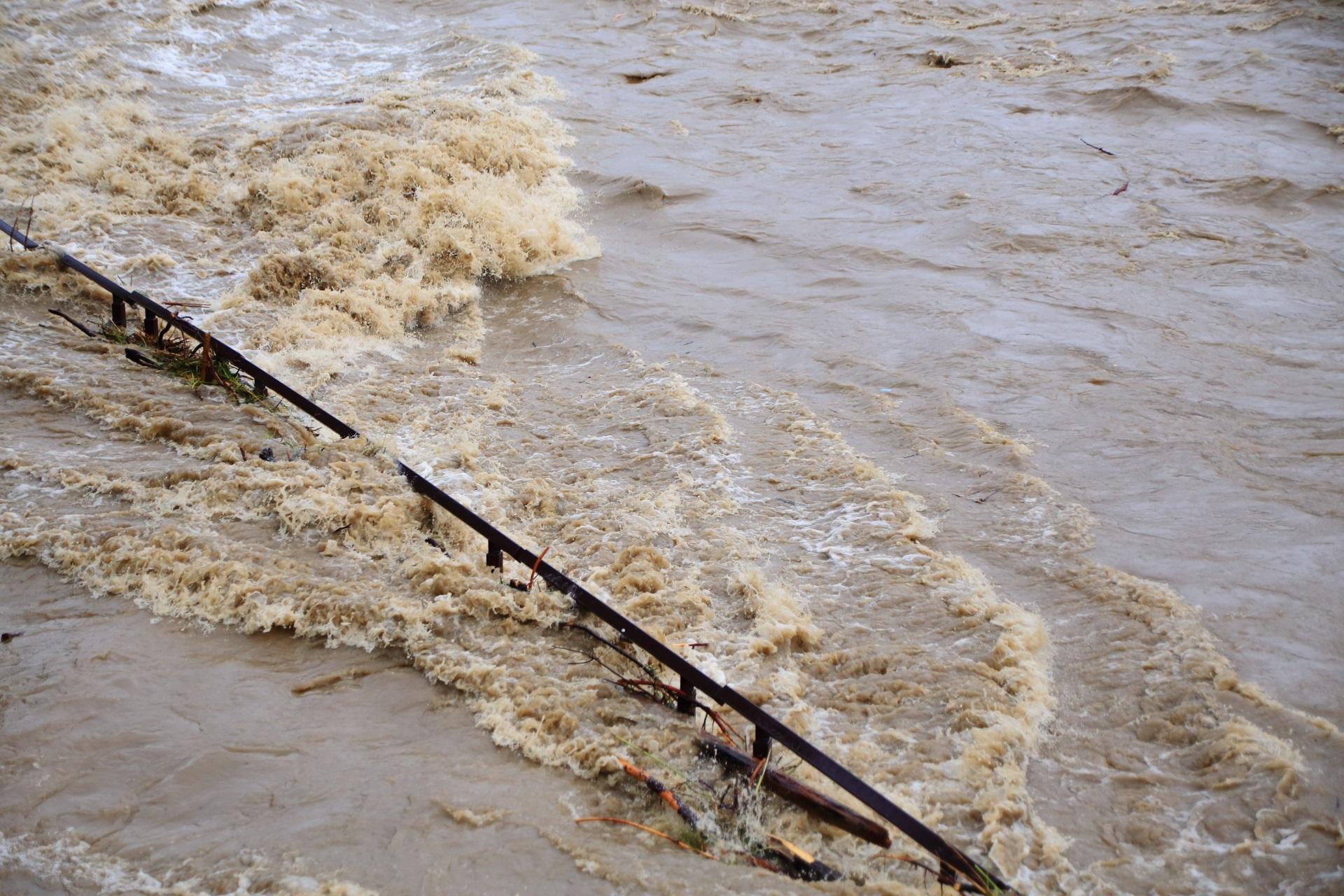 丸太なども引っかかる手すりに打ち付けられる鴨川の濁流