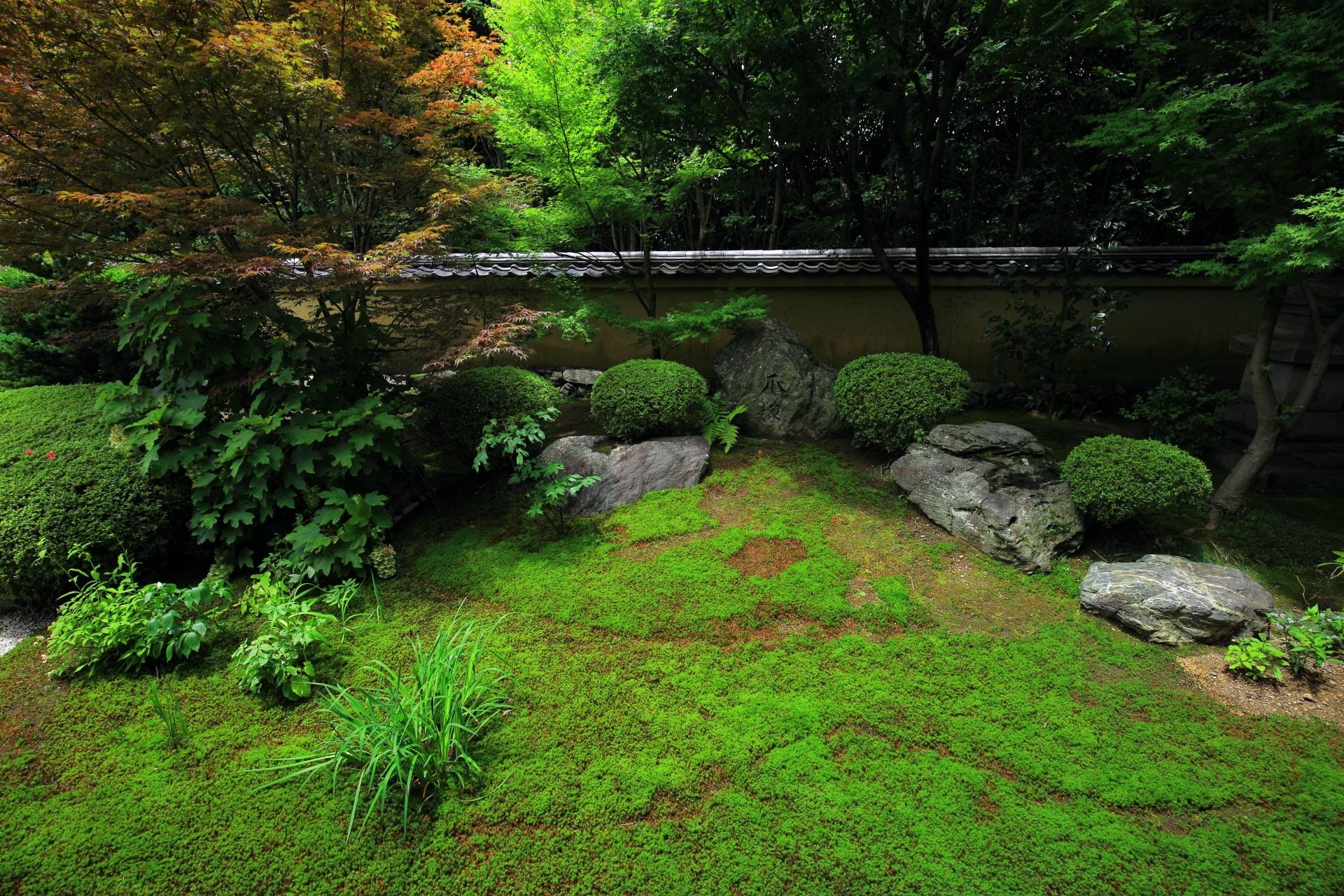 多様な緑溢れる興臨院の方丈西庭
