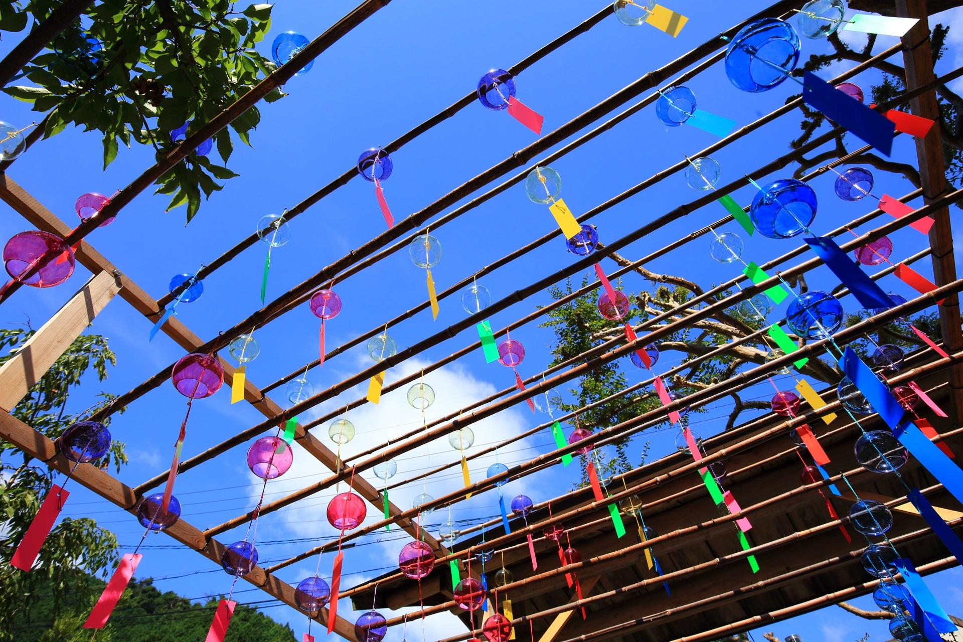 青空に映える賑やかで鮮やかな正寿院の風鈴と短冊