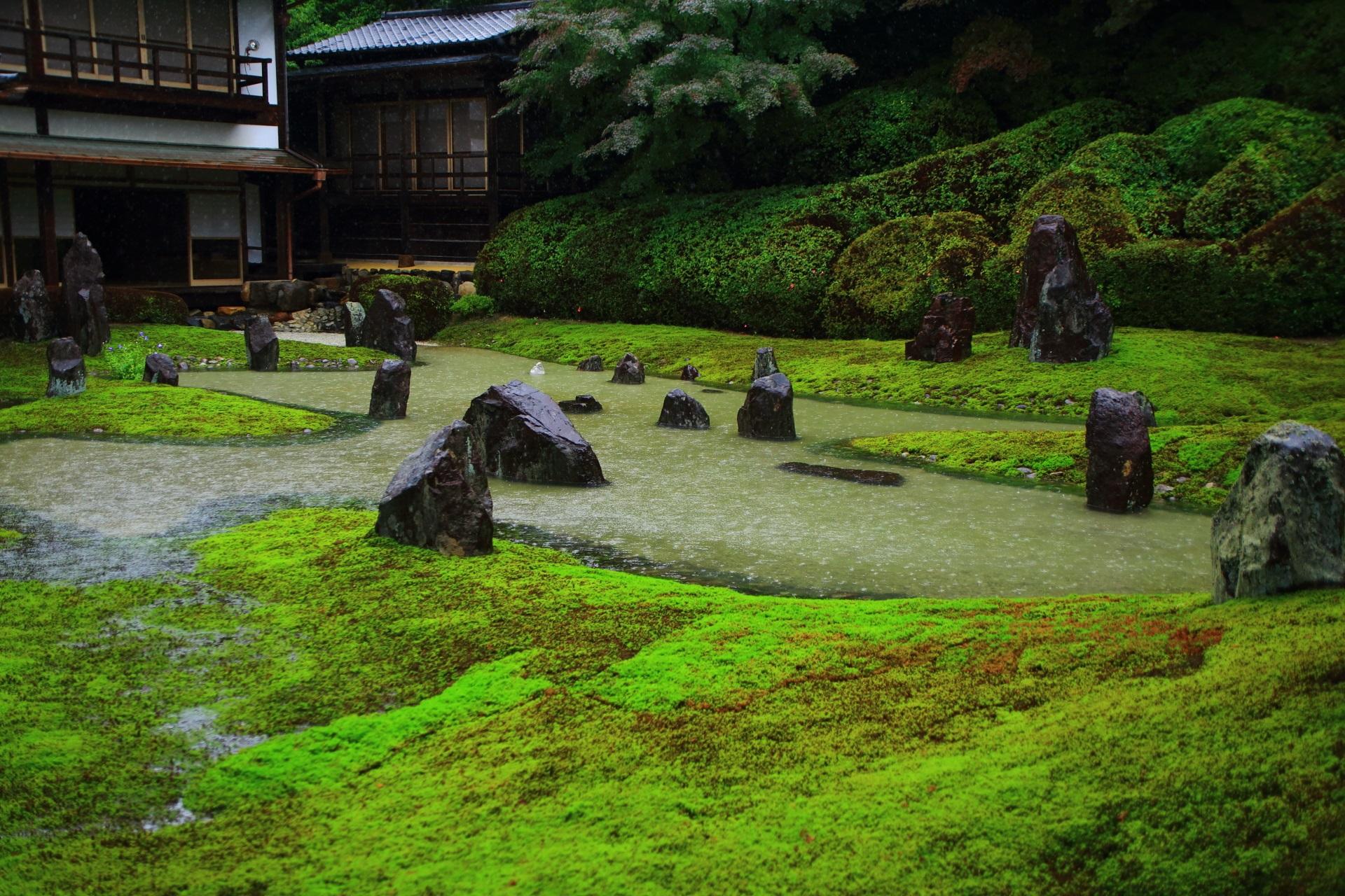 築山の方から眺めた緑と水の雰囲気の違う波心庭