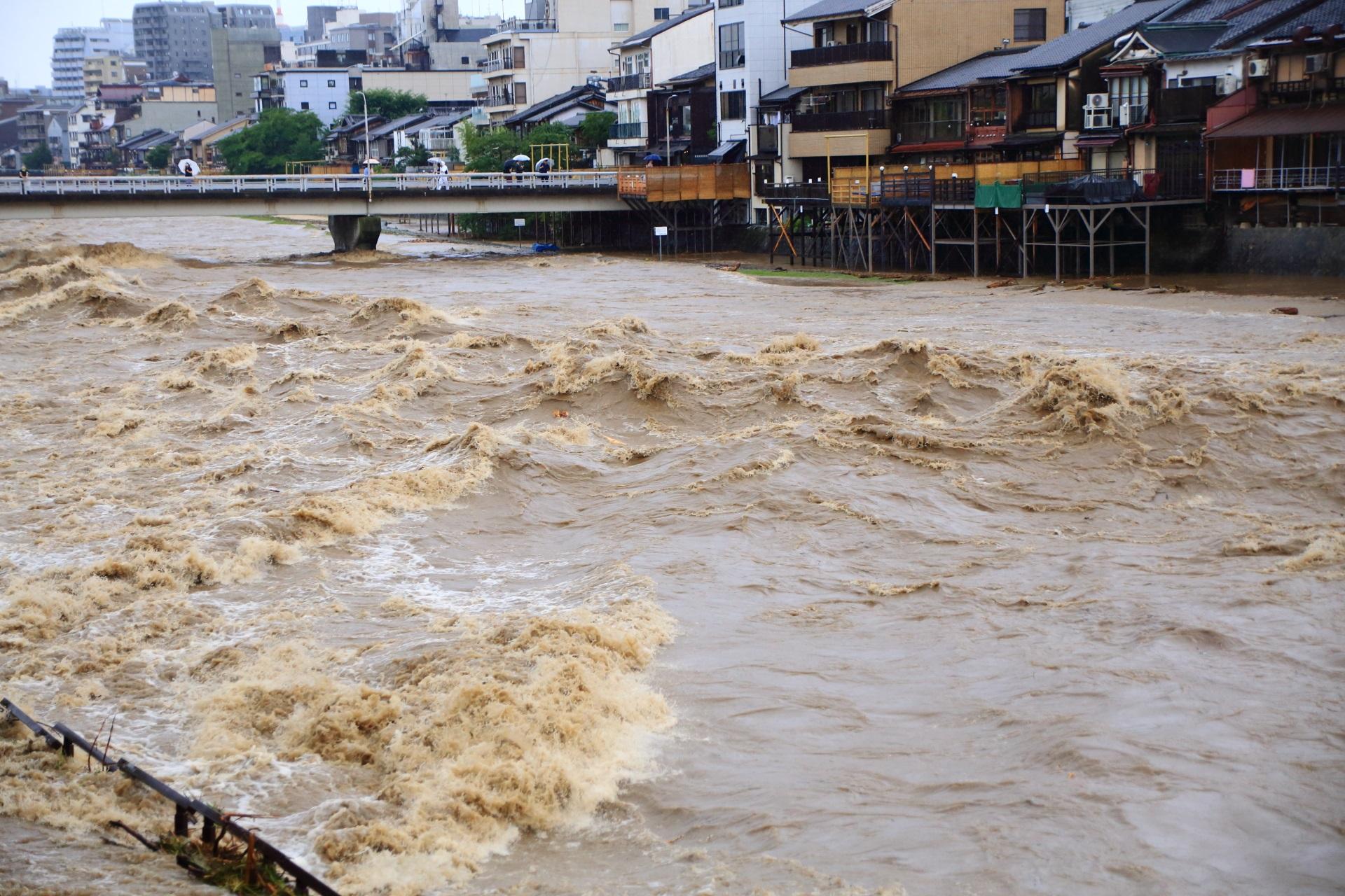 大雨が降り続き暴れる激流の鴨川