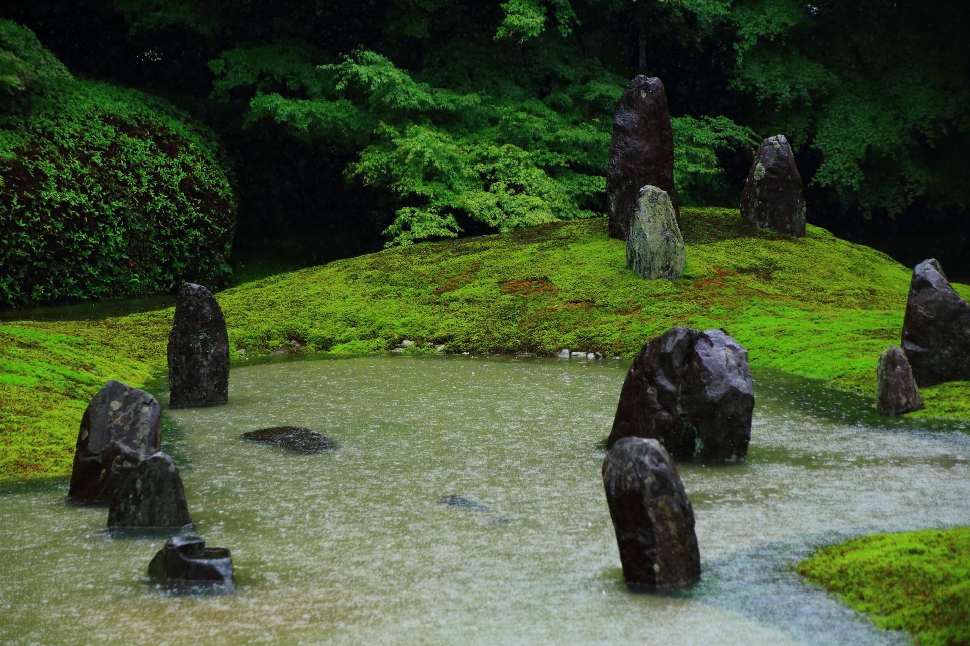 普段とは違う姿を見せてくれる大雨の池の波心庭