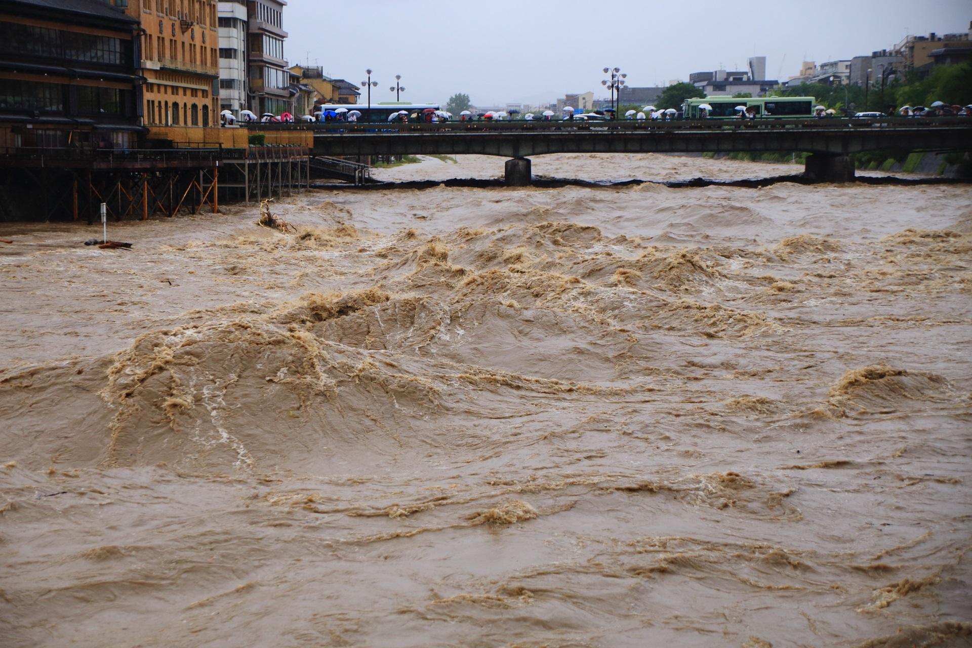 茶色く濁ったうねる大量の鴨川の水