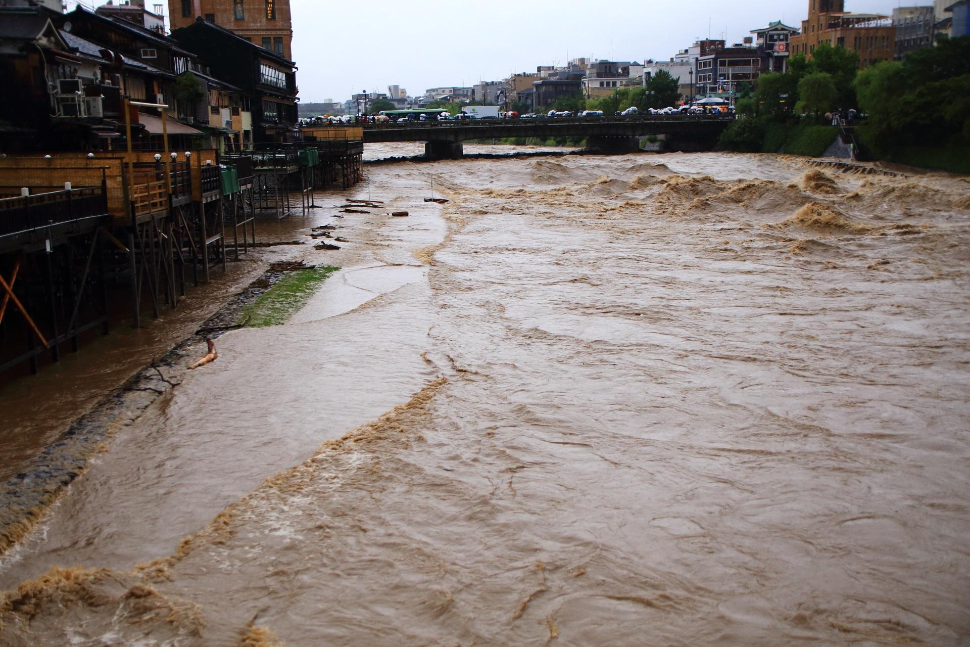 濁流に浸かるみそそぎ川と鴨川の間の河川敷