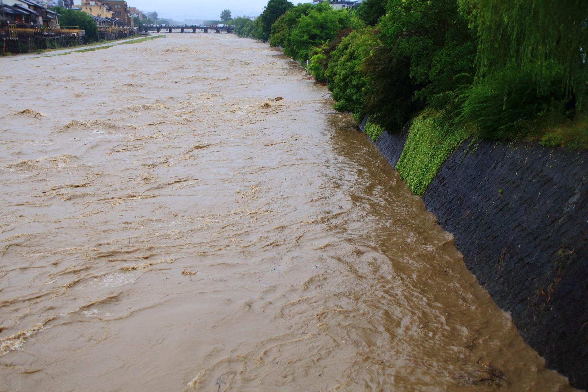 完全に水没する鴨川東側の歩道