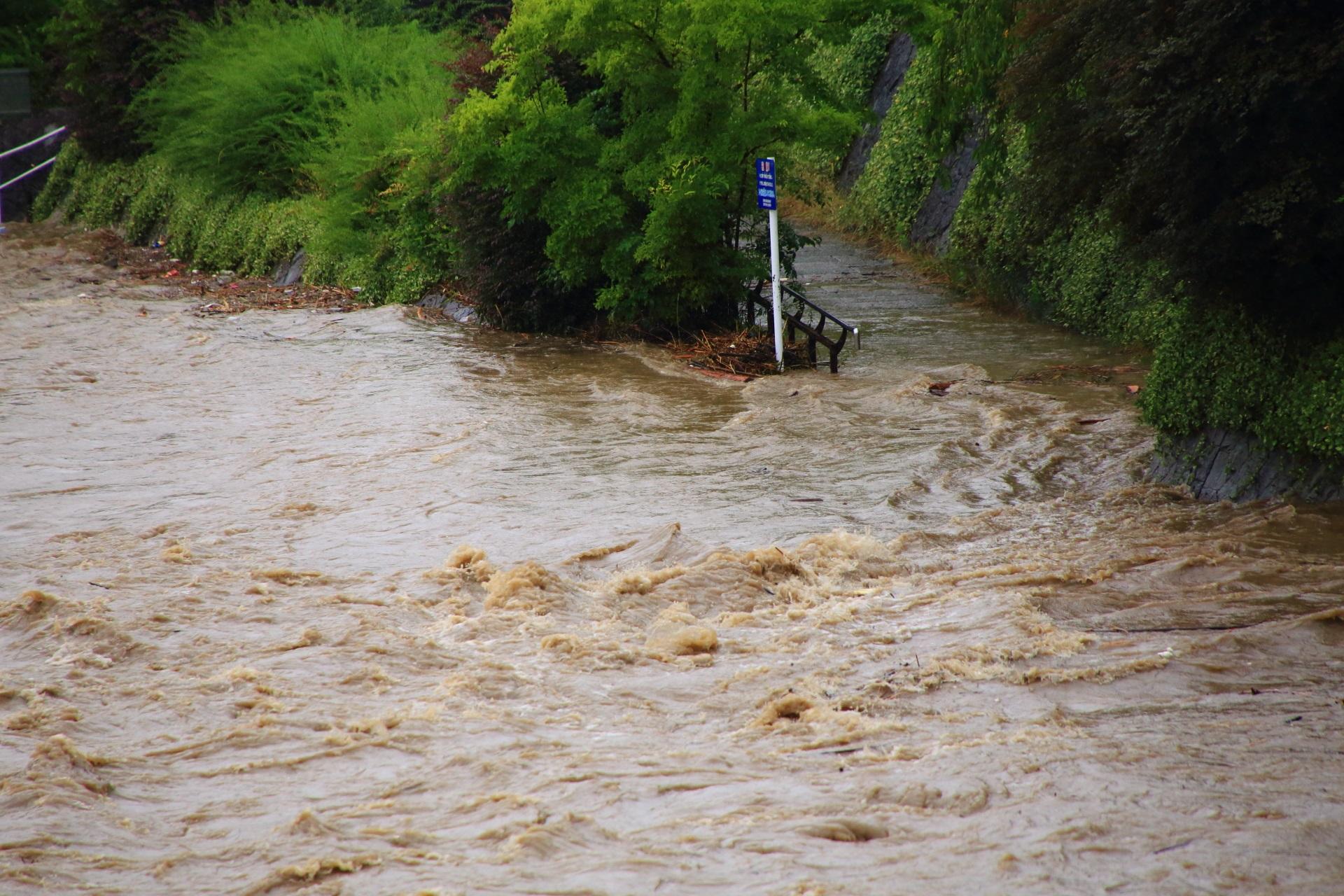 歩道に下りるところにまで迫る鴨川の激流
