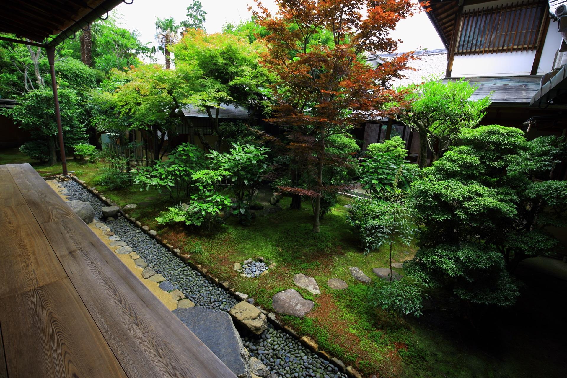 興臨院の茶室「涵虚亭(かんきょてい)」の露地庭