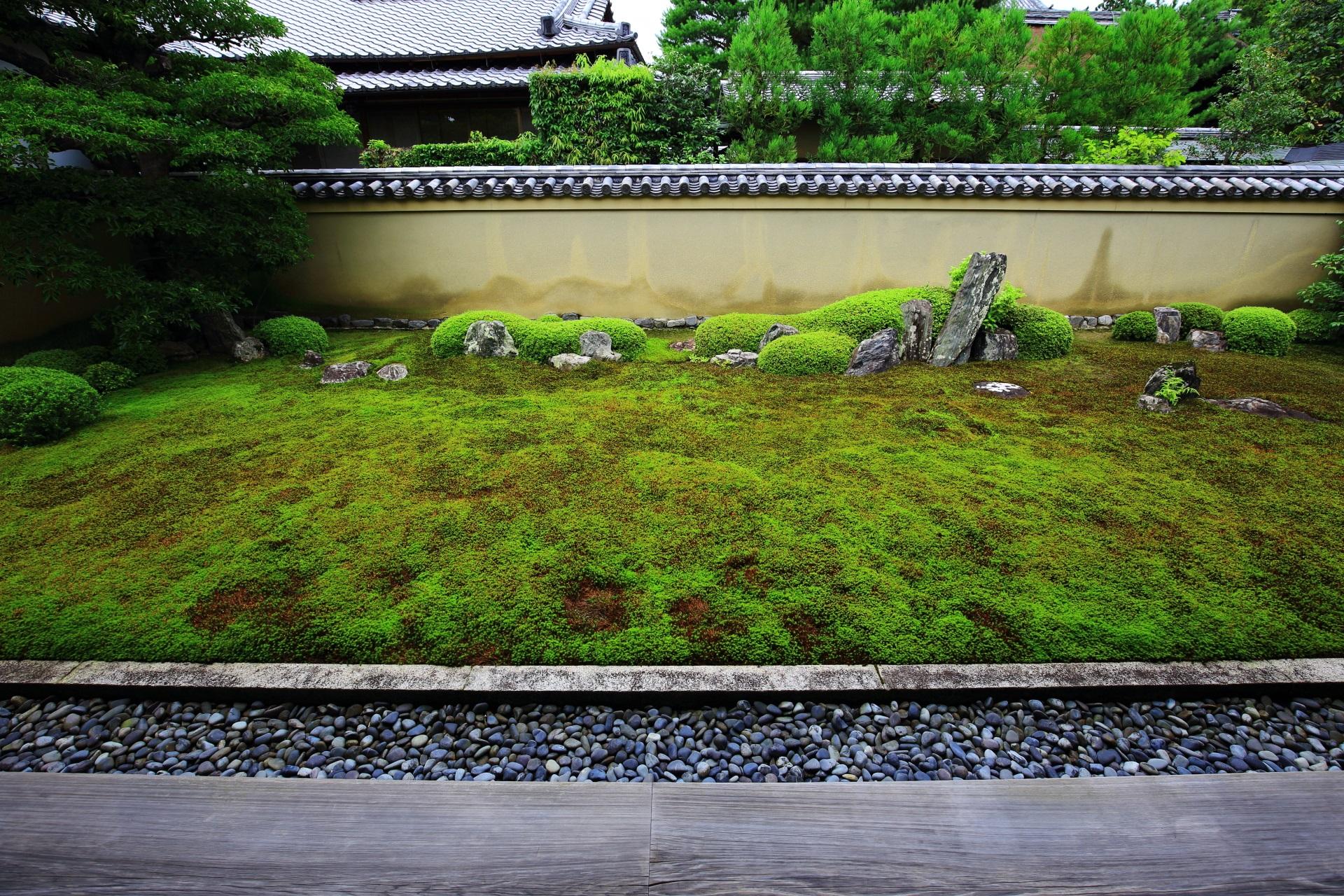 高画質 龍源院 庭園 写真