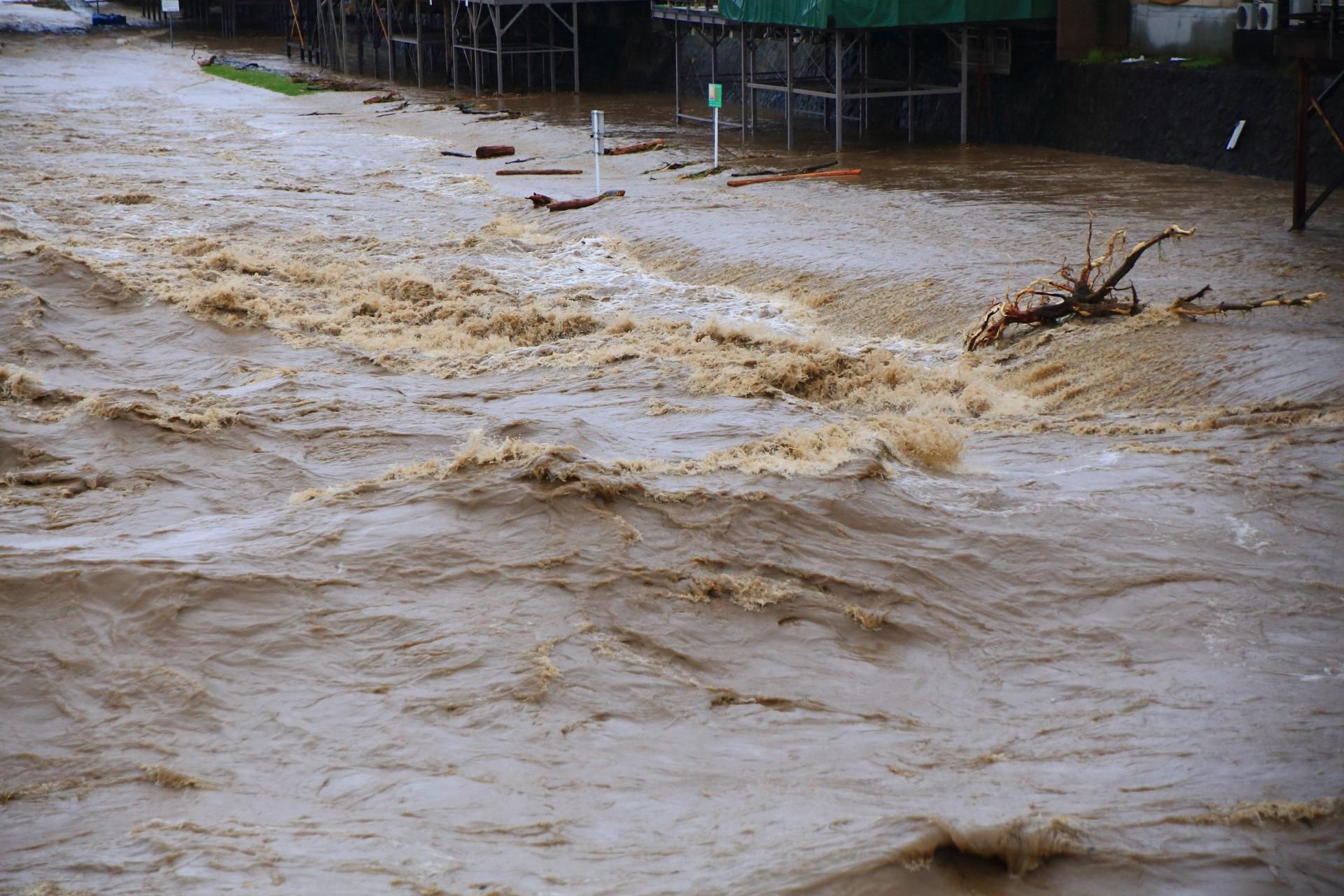 荒れ狂う激流の鴨川