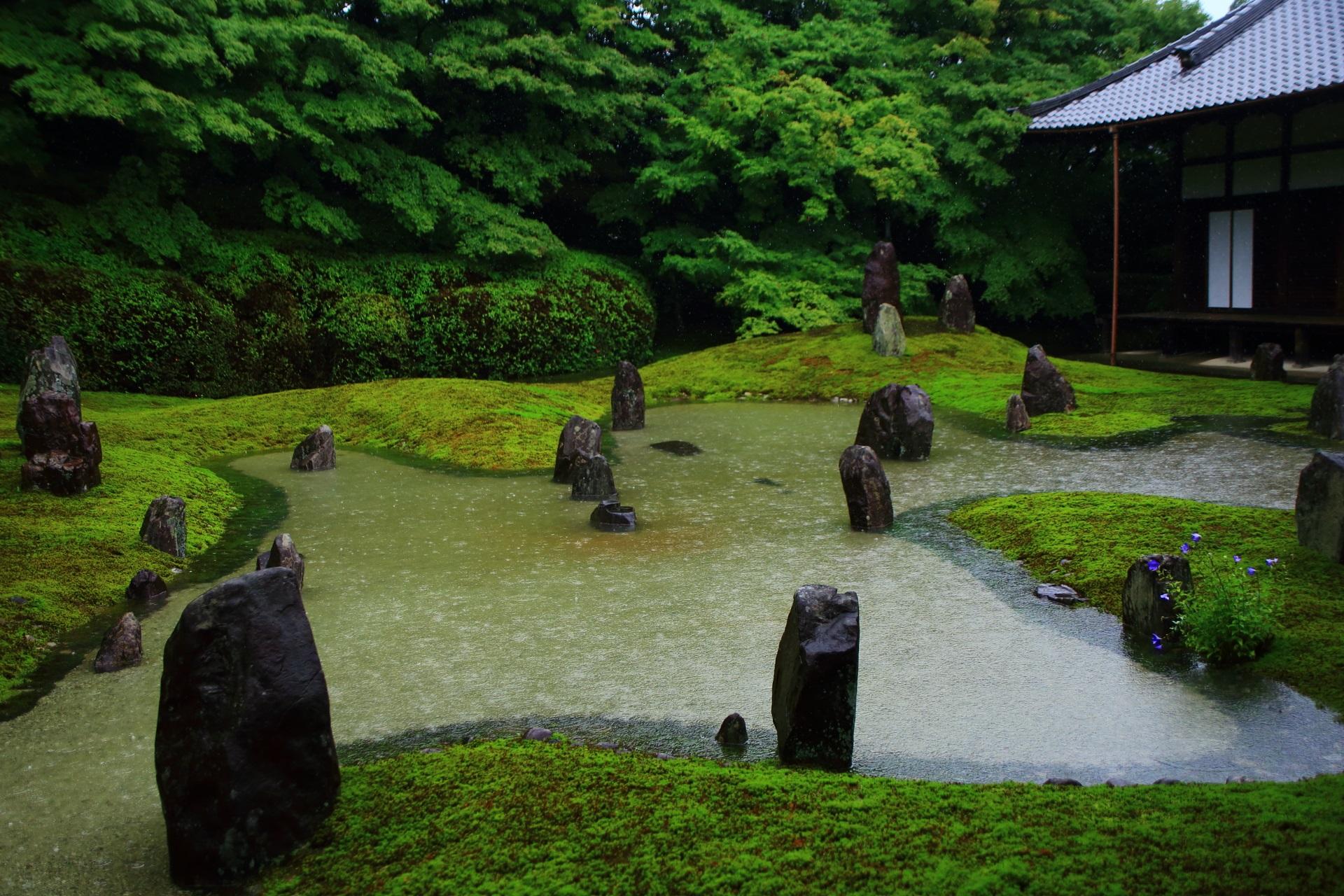 枯山水庭園のはずが見事な池泉式庭園になっている光明院の波心庭