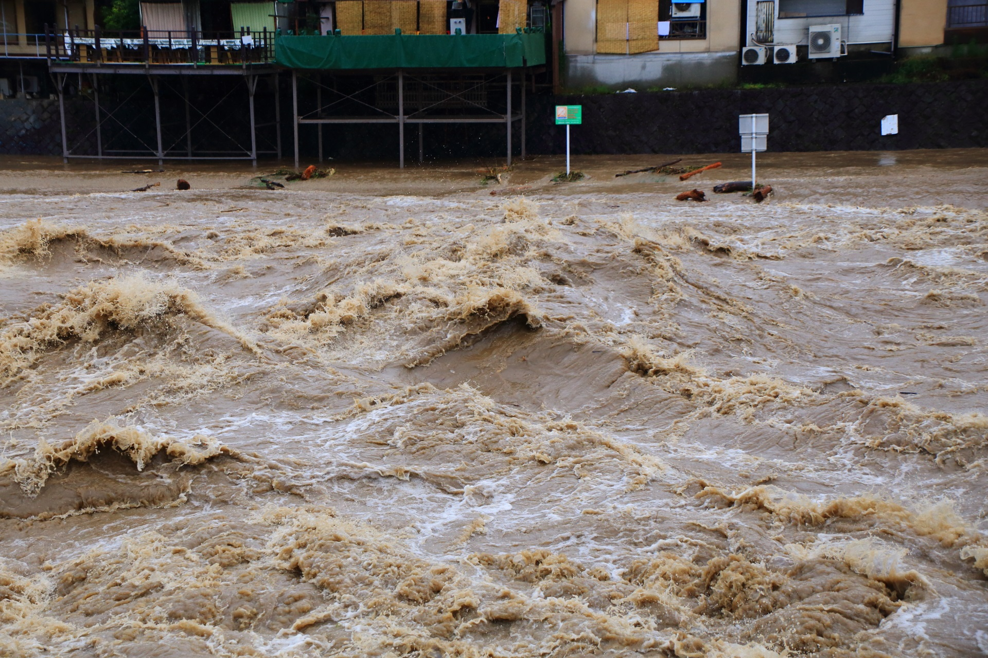 大雨が降り続き止らない鴨川の激流