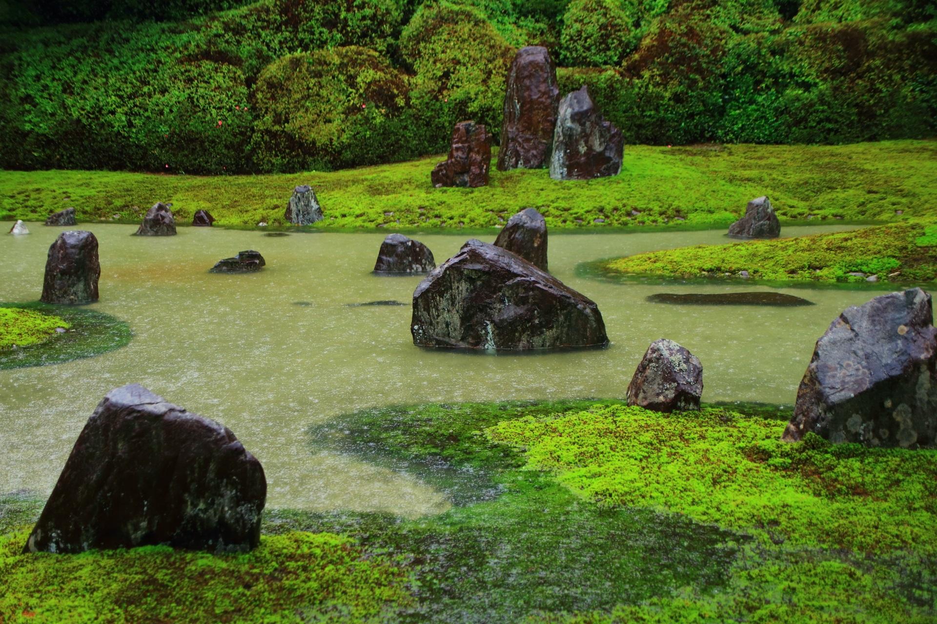 見事な池泉式庭園へ変わる光明院の枯山水庭園の波心庭