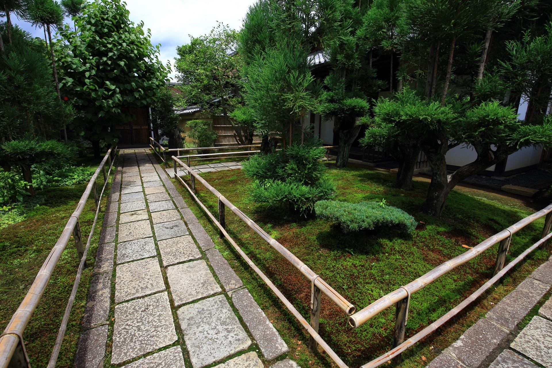 多種多様な植物や緑が配された瑞峯院の石畳の参道