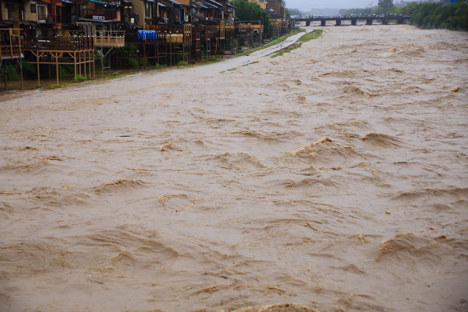氾濫しそうで危険な激流の鴨川