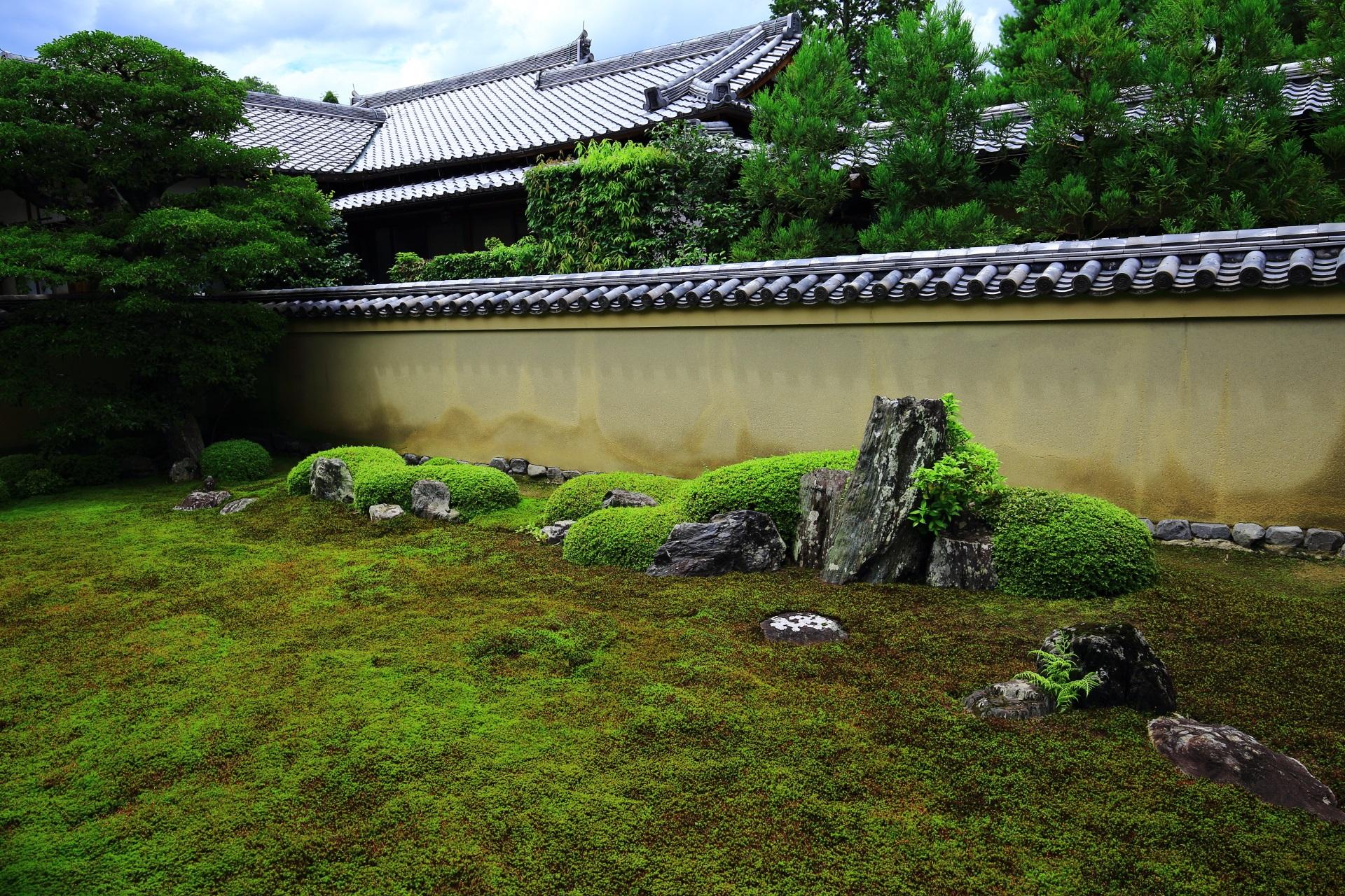 苔の上に丸い刈り込みと28個の庭石が配される龍源院の龍吟庭