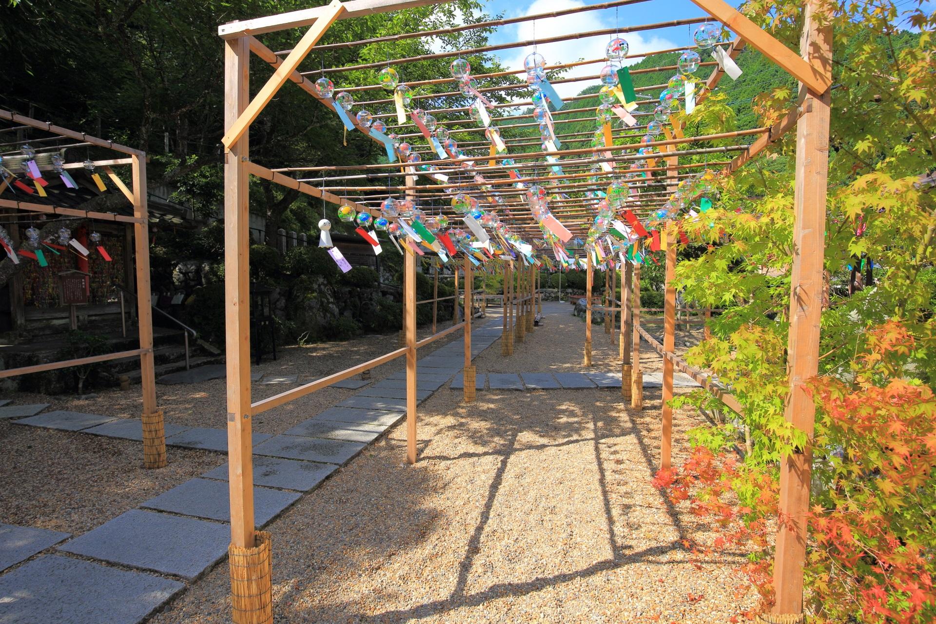 正寿院の華やかで涼しげな夏の風鈴まつり