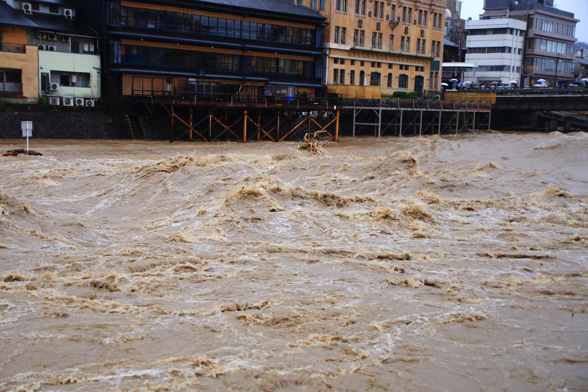 台風と前線の影響による豪雨で自然の驚異にさらされる激流の鴨川