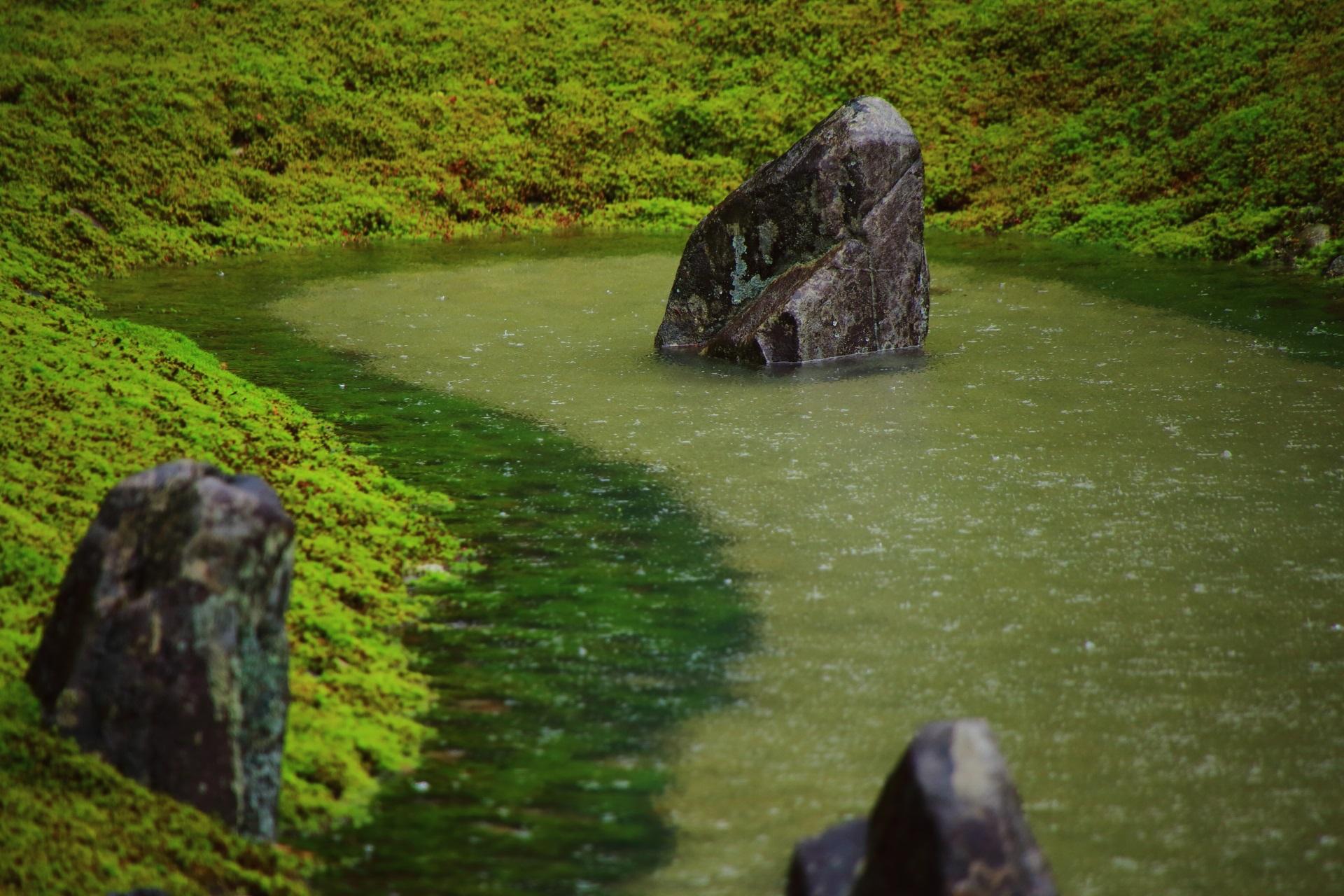 波心庭の苔に囲まれた池の中に佇む岩
