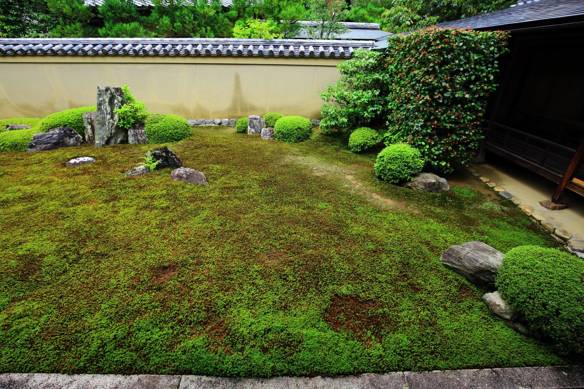 様々な大きさや形の石組みは陸地を現す龍源院の龍吟庭