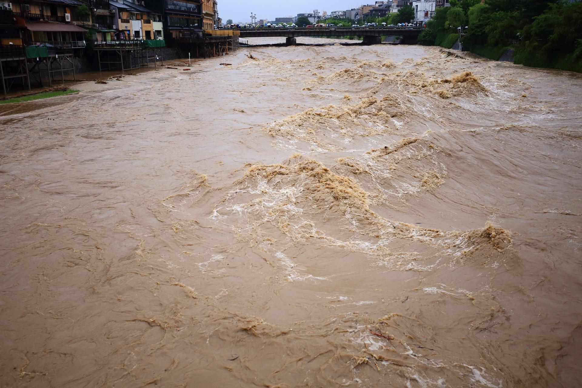 溢れ出しそうな危険な激流の鴨川