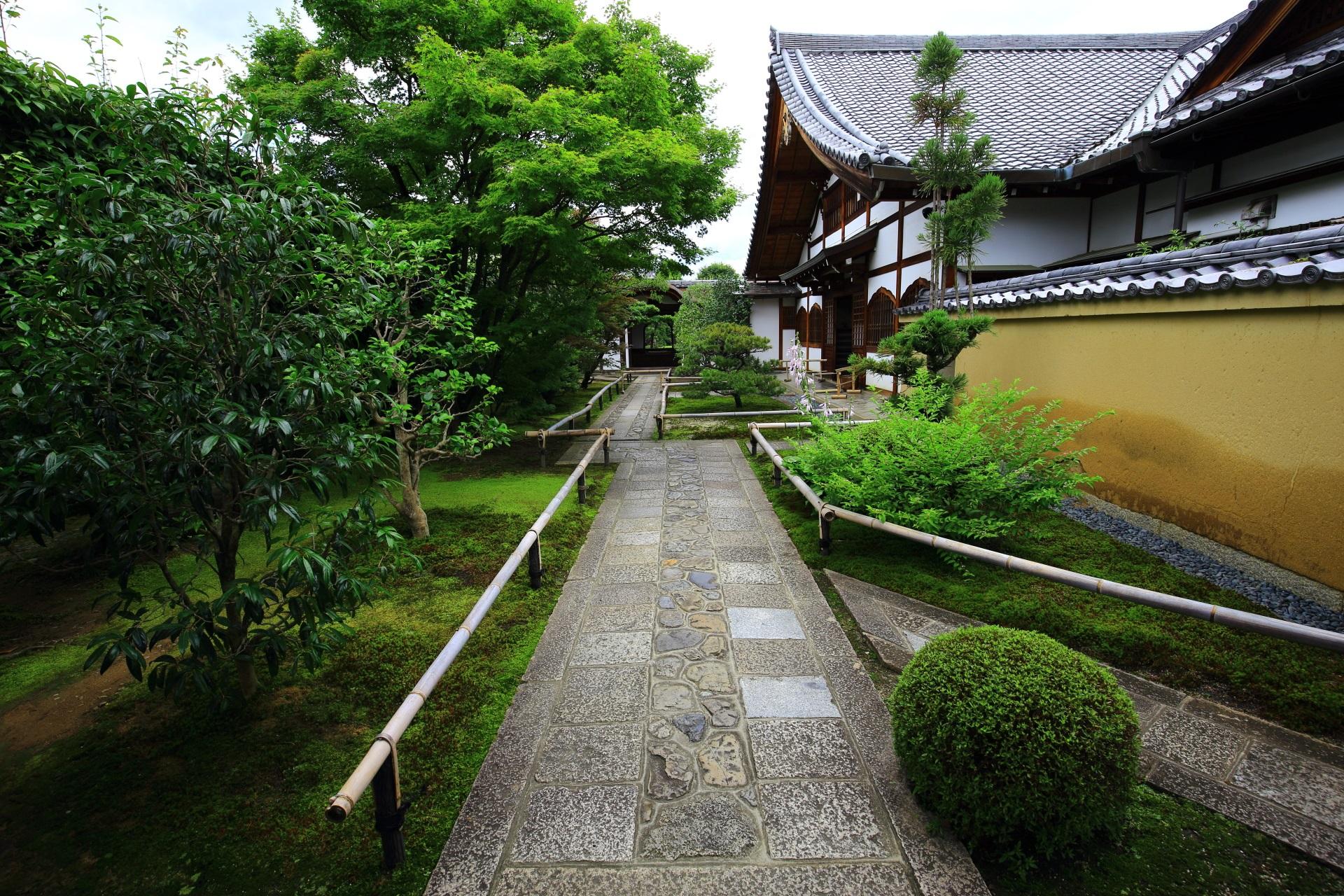 興臨院の緑につつまれる石畳の参道