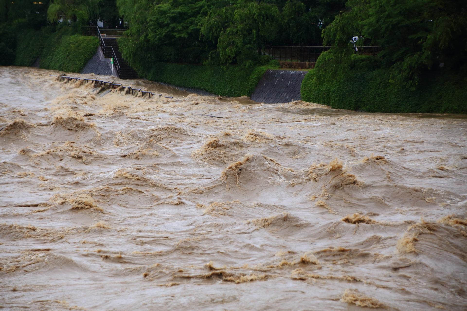 完全に激流にのまれる鴨川河川敷の歩道